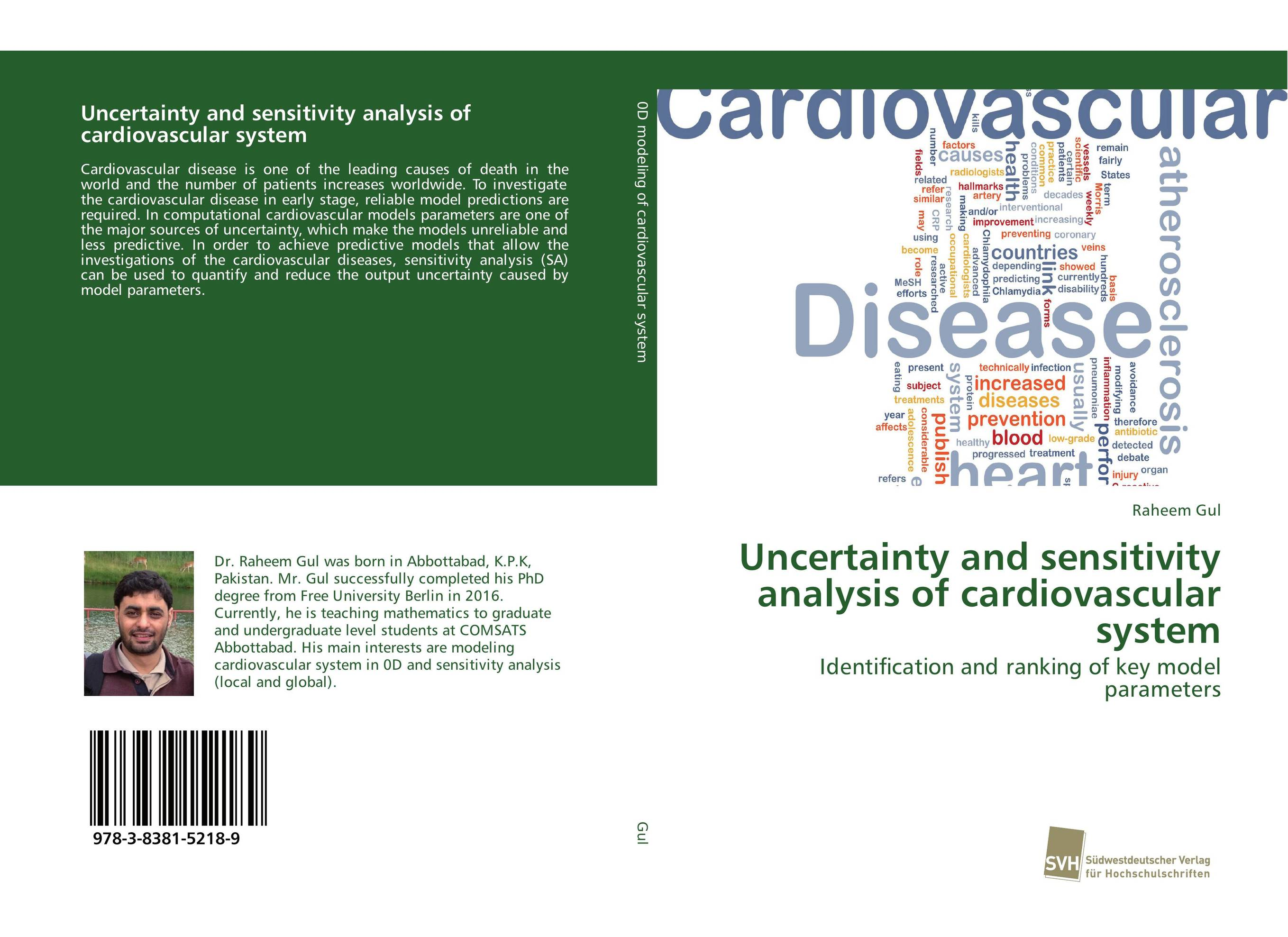 Uncertainty and sensitivity analysis of cardiovascular system cardiovascular changes and unconjugated hyperbilirubinemia in neonates