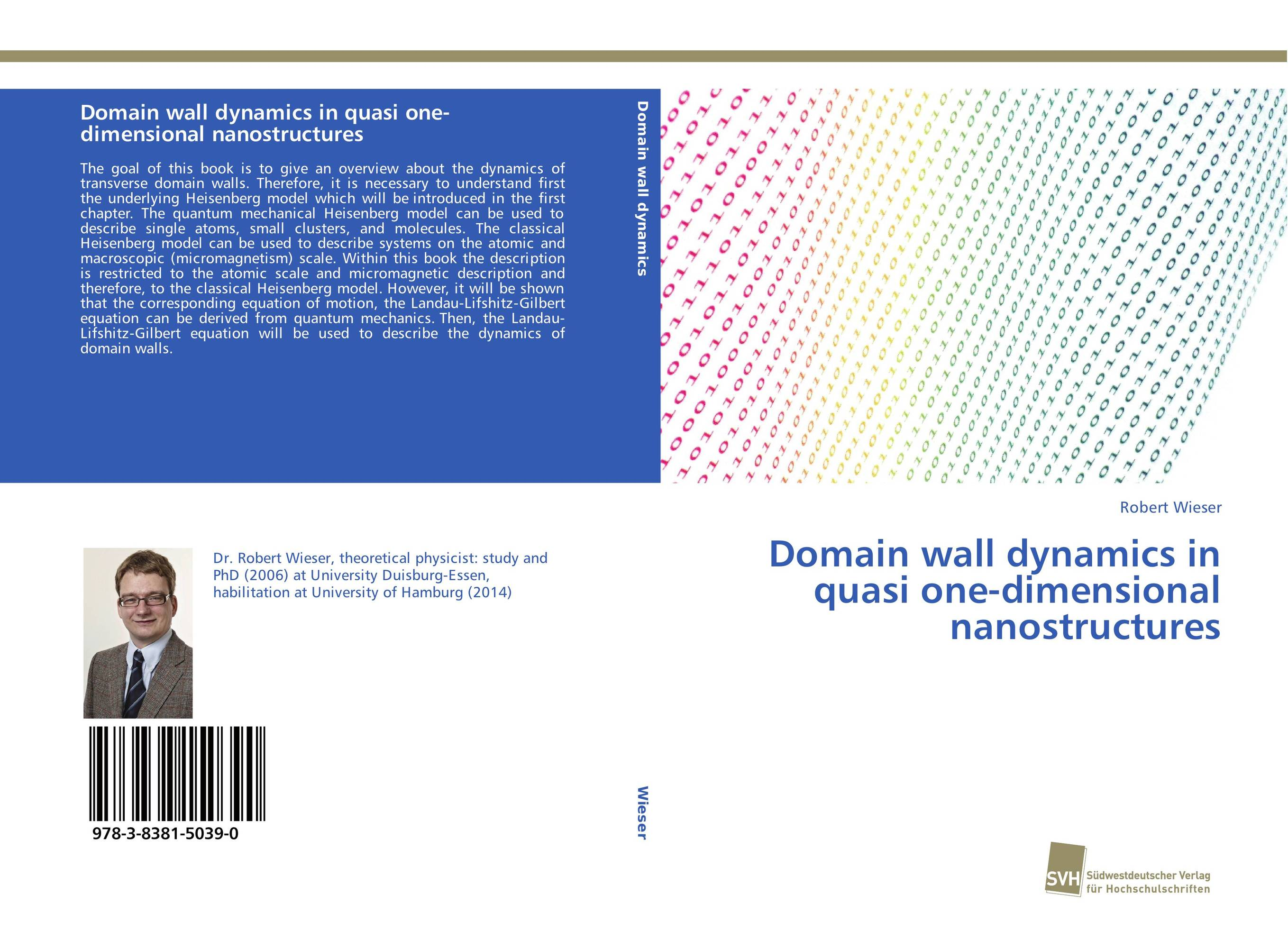 Domain wall dynamics in quasi one-dimensional nanostructures
