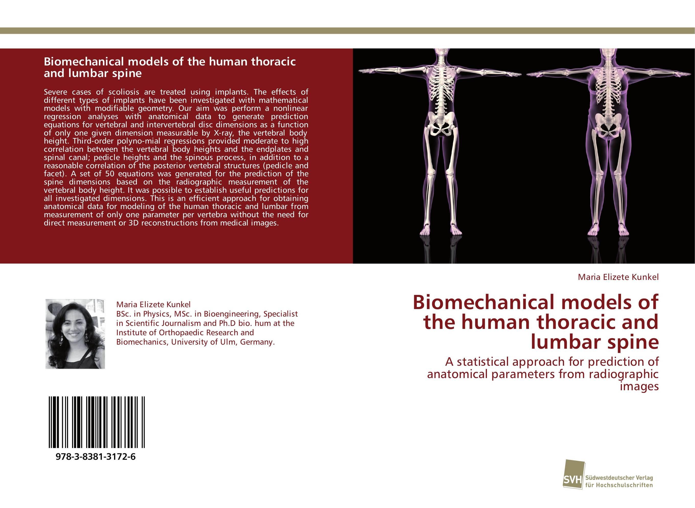 Biomechanical models of the human thoracic and lumbar spine 12385 cmam vertebra02 human cervical vertebral column deluxe skeleton model medical science teaching anatomical models