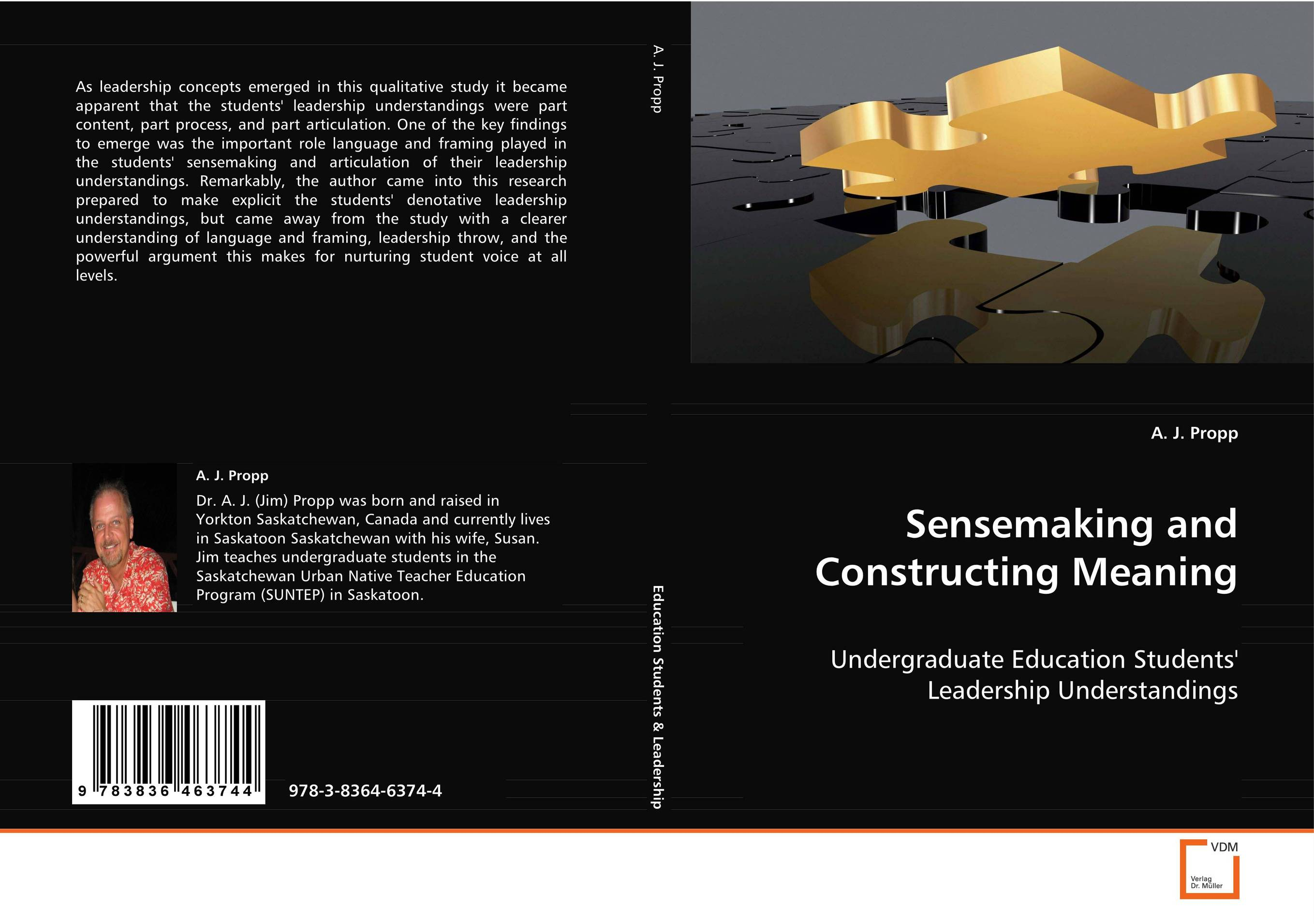 Sensemaking and Constructing Meaning jeffrey sonnenfeld leadership and governance from the inside out