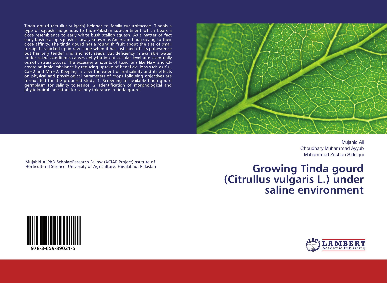 Growing Tinda gourd (Citrullus vulgaris L.) under saline environment water stress tolerance of common bean phaseolus vulgaris l