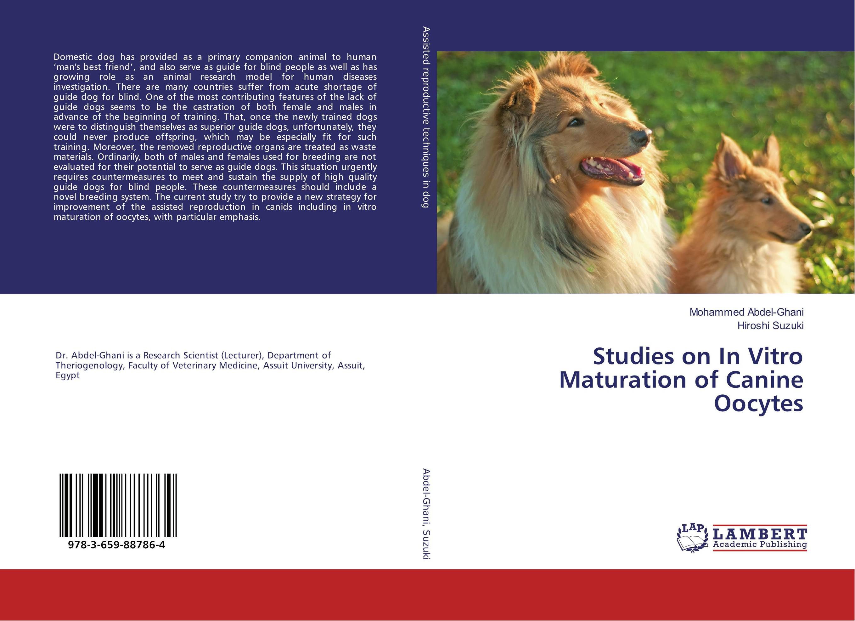 Studies on In Vitro Maturation of Canine Oocytes newly launched german talking watch for blind or low vison people with alarm for the elderly speaking quartz