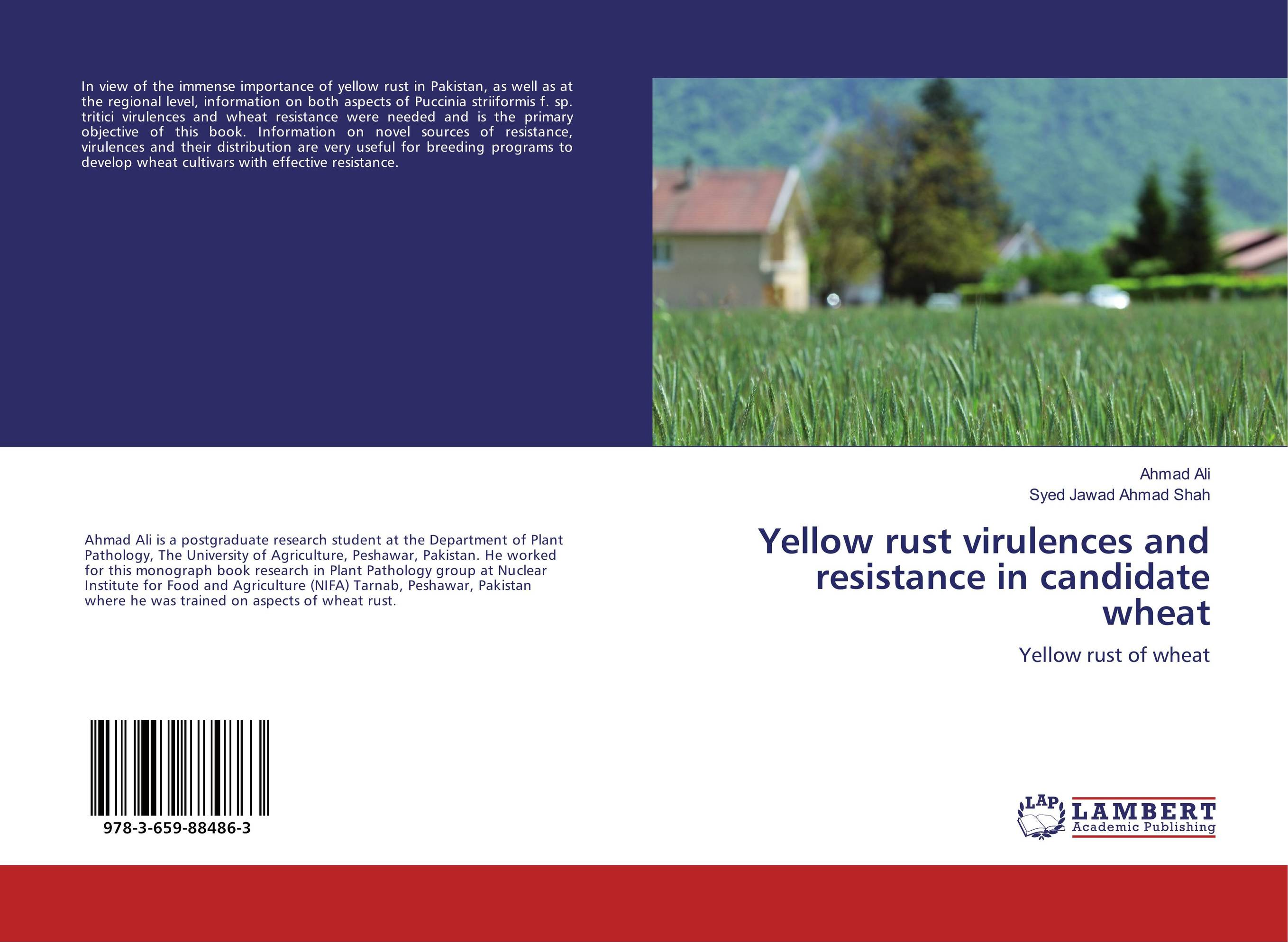 Yellow rust virulences and resistance in candidate wheat genetic variation for stem rust resistance in spring wheat