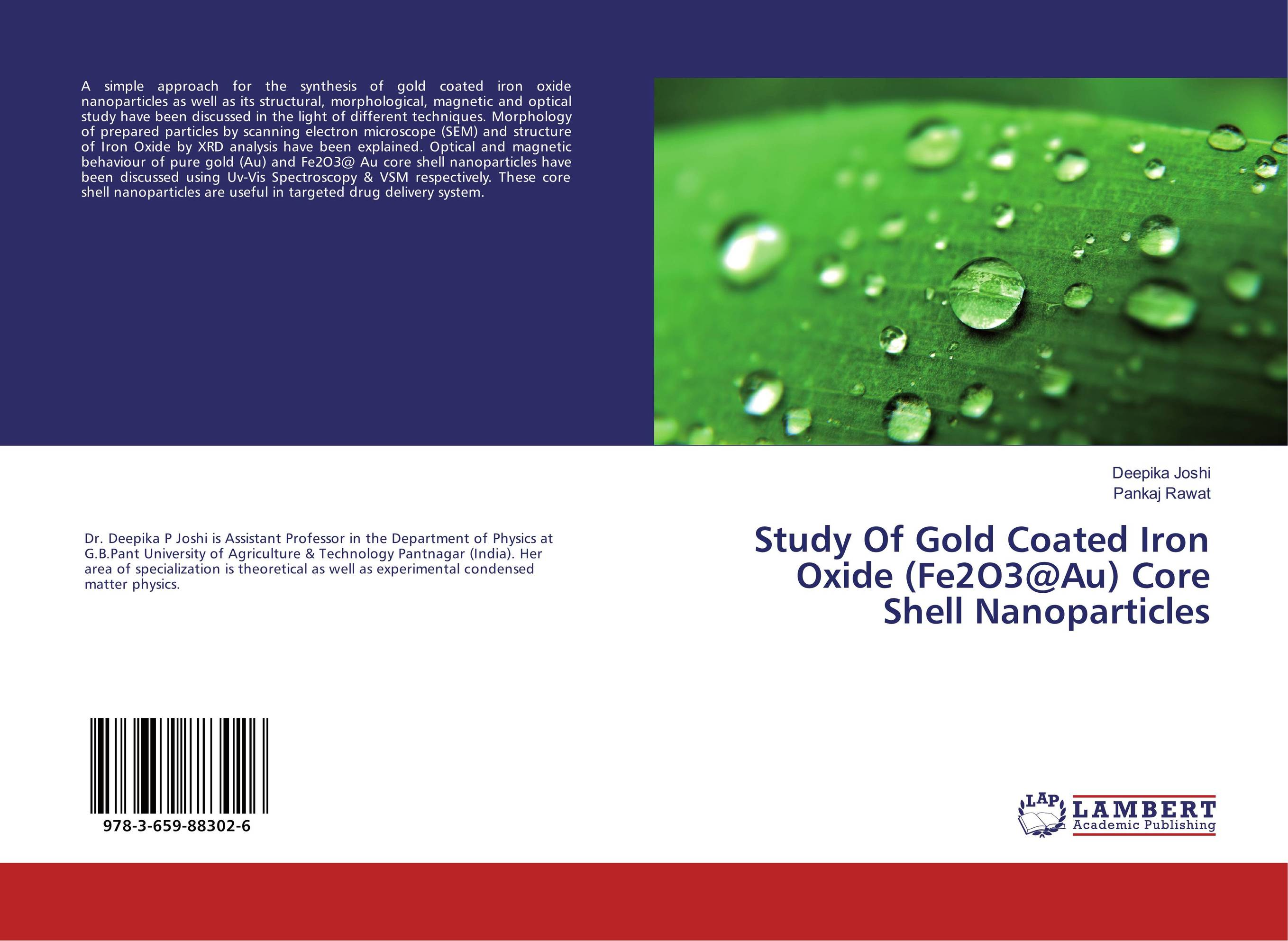 Study Of Gold Coated Iron Oxide (Fe2O3@Au) Core Shell Nanoparticles starch capped gold nanoparticles for catechol biosensor