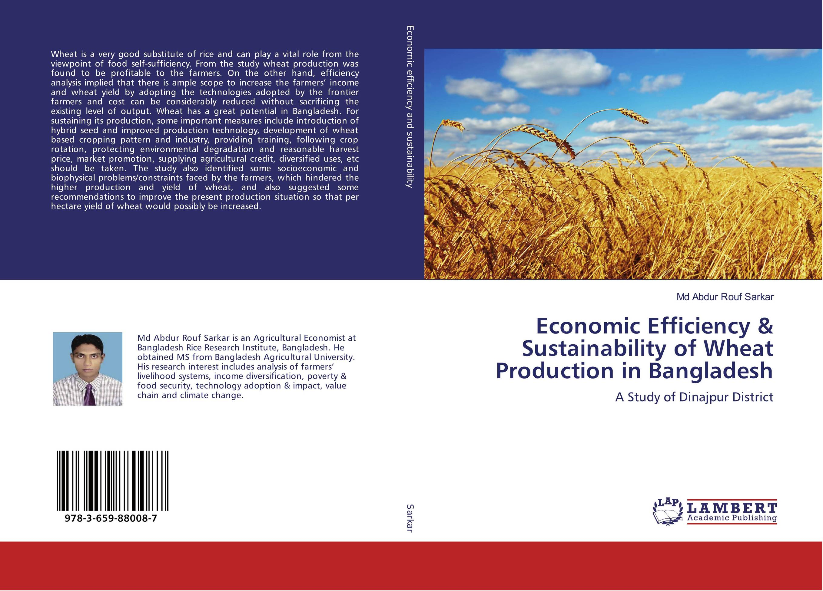 Economic Efficiency & Sustainability of Wheat Production in Bangladesh land tenure and efficiency in boro rice production in bangladesh