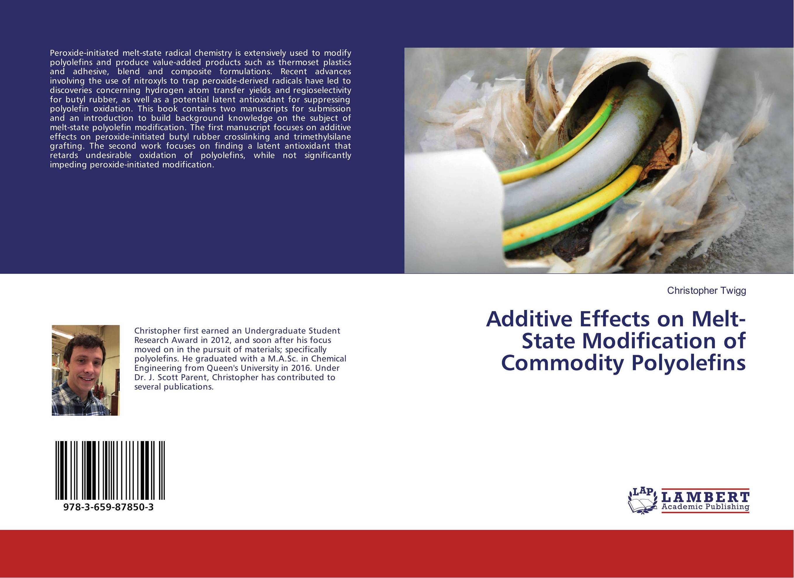 Additive Effects on Melt-State Modification of Commodity Polyolefins affair of state an