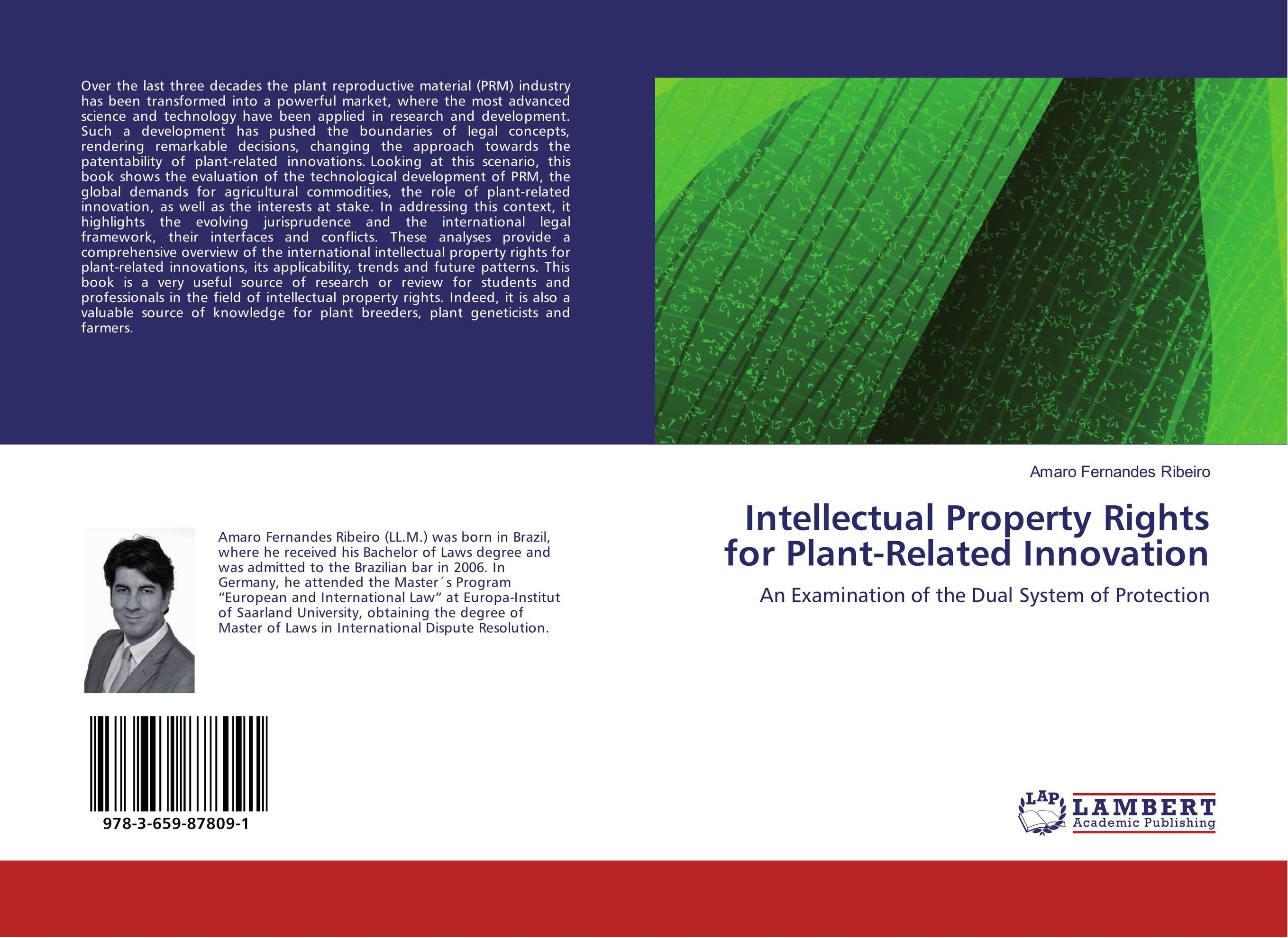Intellectual Property Rights for Plant-Related Innovation development of a computational interface for small hydropower plant