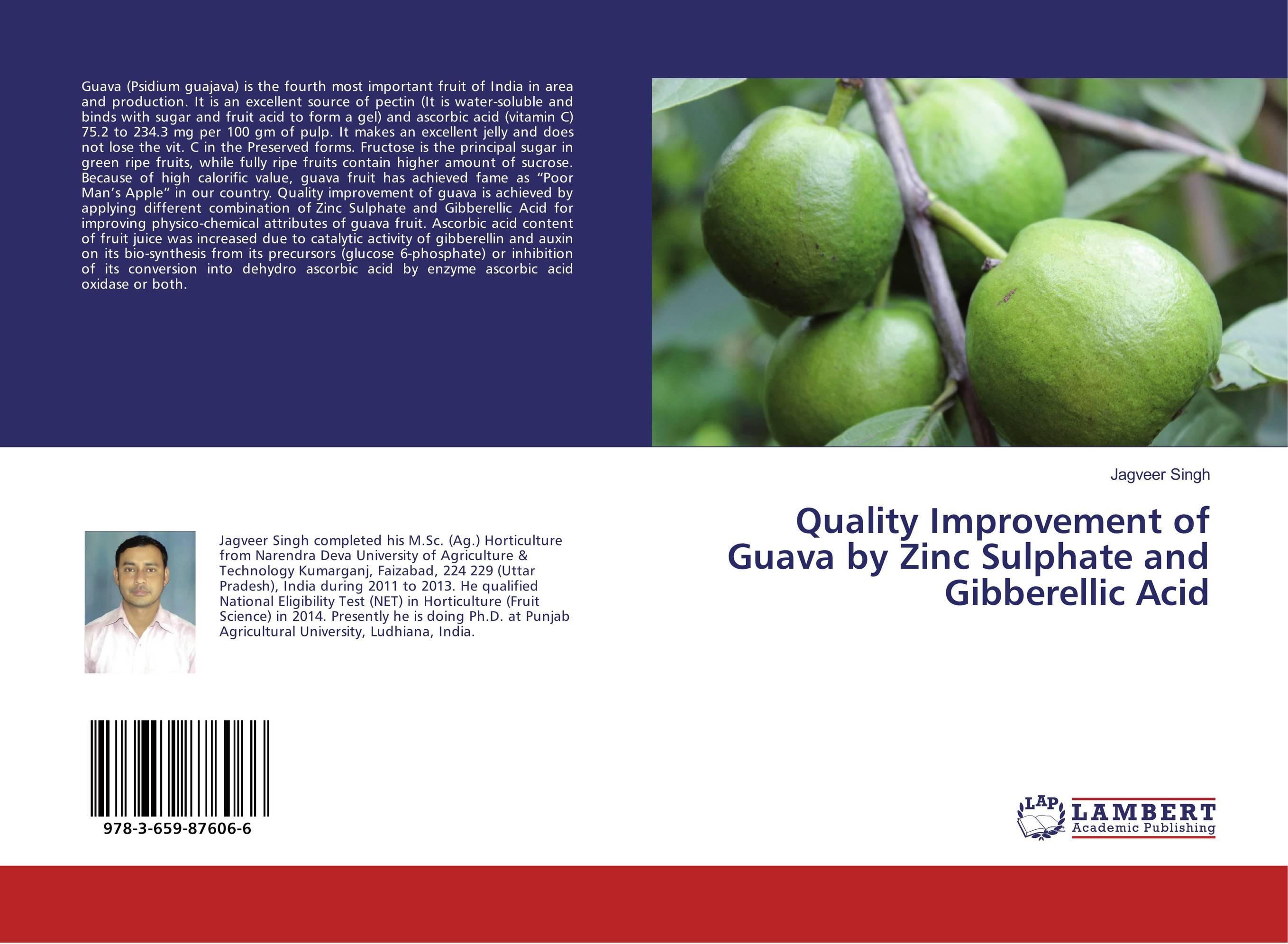 Quality Improvement of Guava by Zinc Sulphate and Gibberellic Acid strain improvement for hyperproduction of citric acid