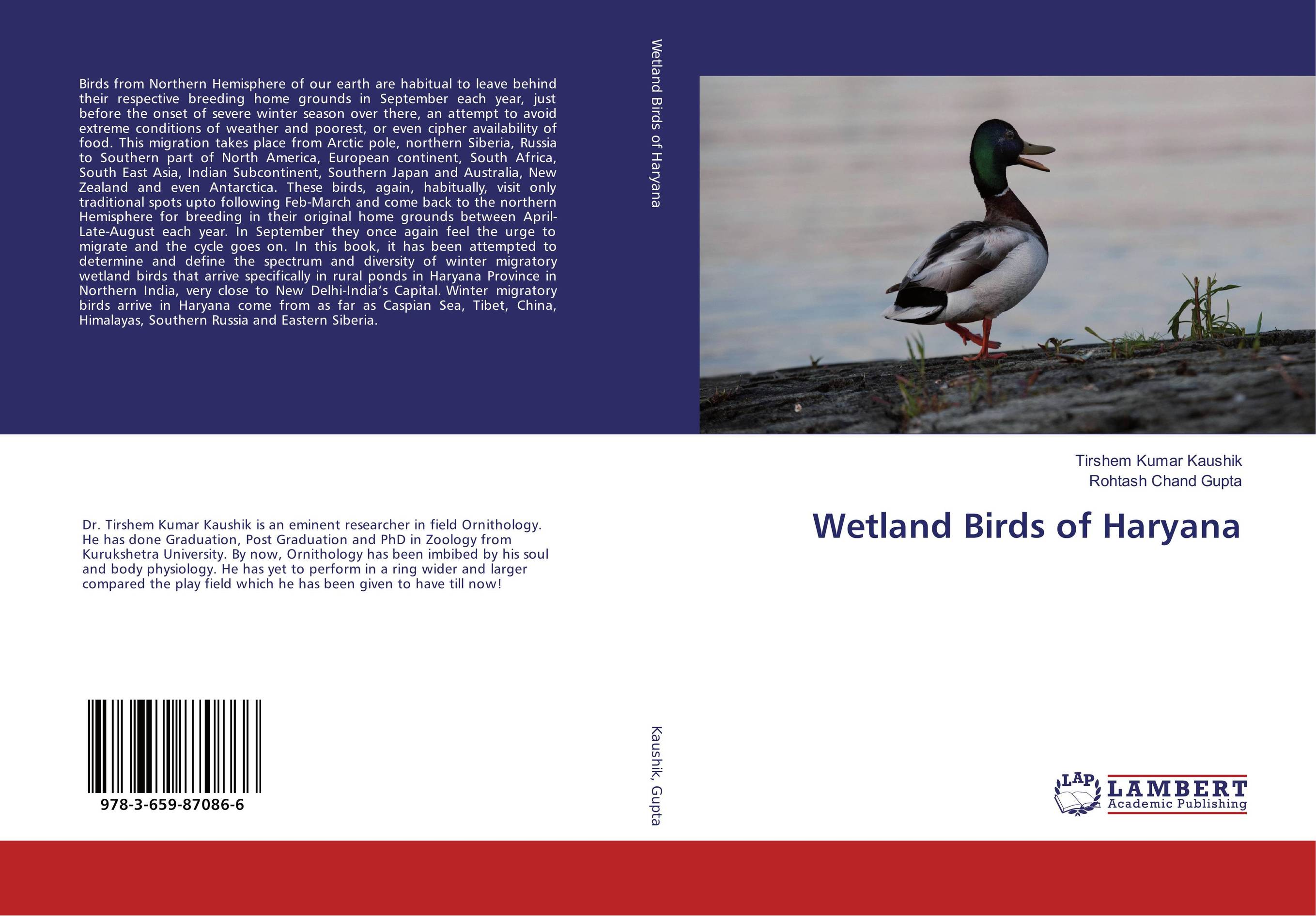 Wetland Birds of Haryana middle to late bronze age transition in the southern urals russia