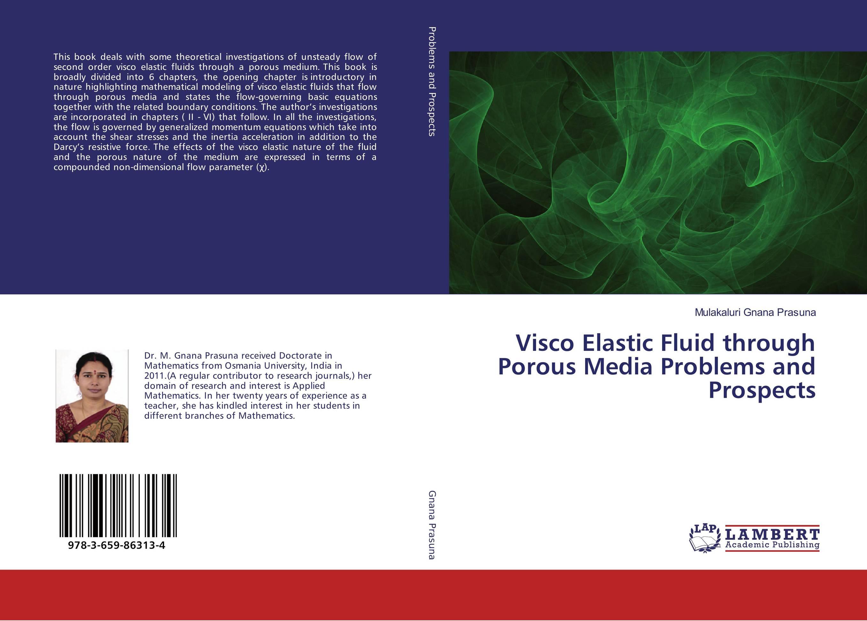 Visco Elastic Fluid through Porous Media Problems and Prospects transport phenomena in porous media iii