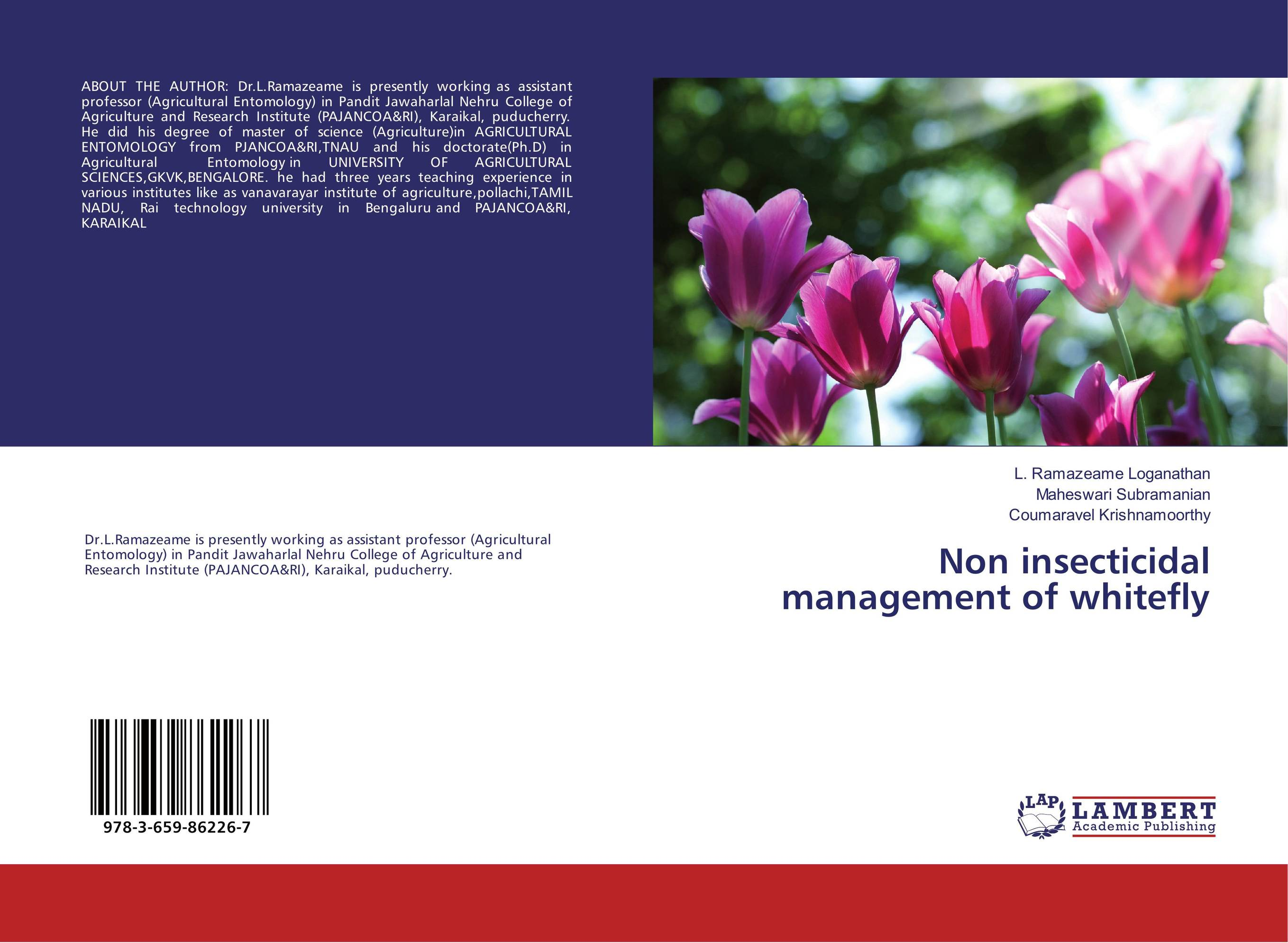 Non insecticidal management of whitefly