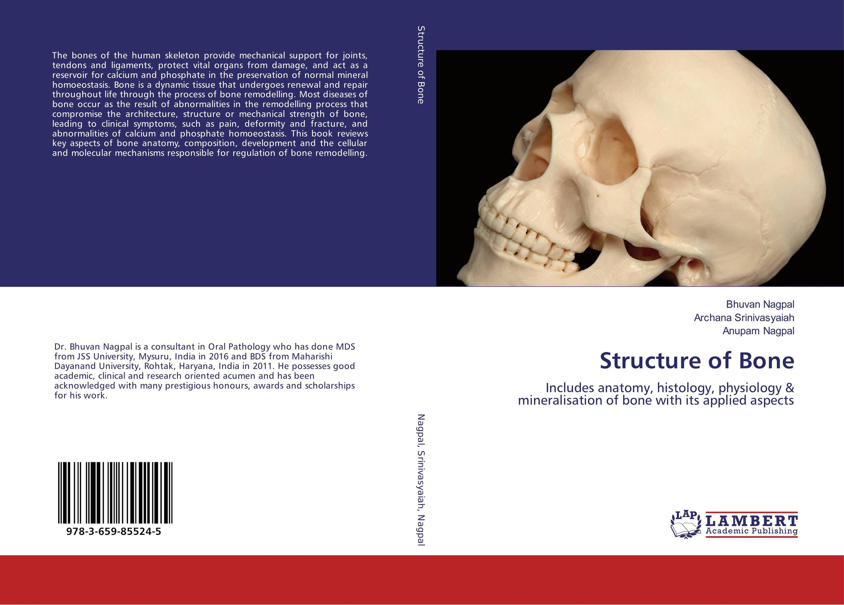 Structure of Bone prediction of bone length from bone fragments