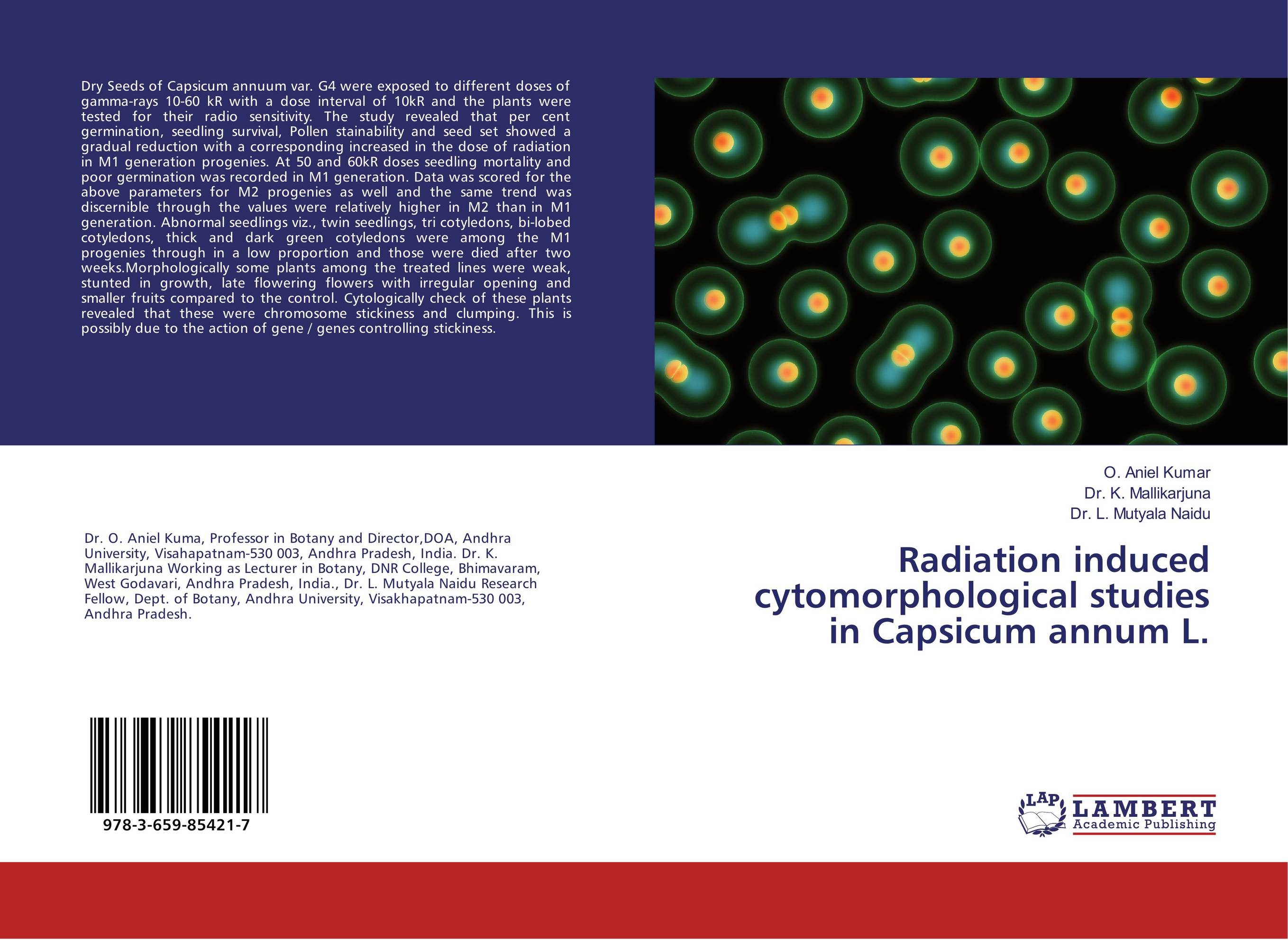 Radiation induced cytomorphological studies in Capsicum annum L. spring in the garden flowers and seedlings