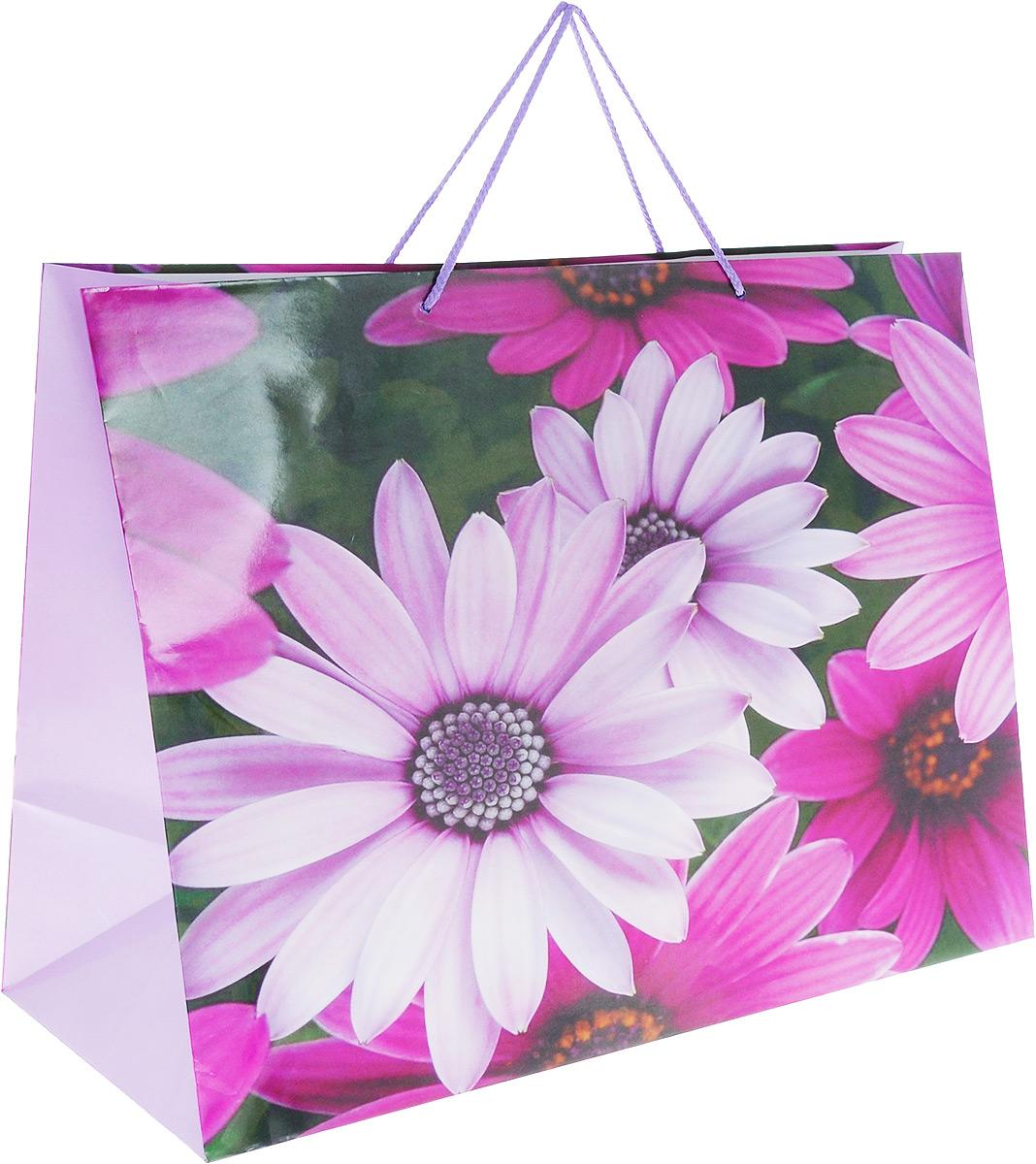 Пакет подарочный МегаМАГ Цветы, 56 х 41 х 24 см. 903/904 XXLH903/904 XXLH_сиреневый,зелёныйПодарочный пакет МегаМАГ Цветы, изготовленный из плотной ламинированной бумаги, станет незаменимым дополнением к выбранному подарку. Для удобной переноски на пакете имеются ручки-шнурки.Подарок, преподнесенный в оригинальной упаковке, всегда будет самым эффектным и запоминающимся. Окружите близких людей вниманием и заботой, вручив презент в нарядном, праздничном оформлении.