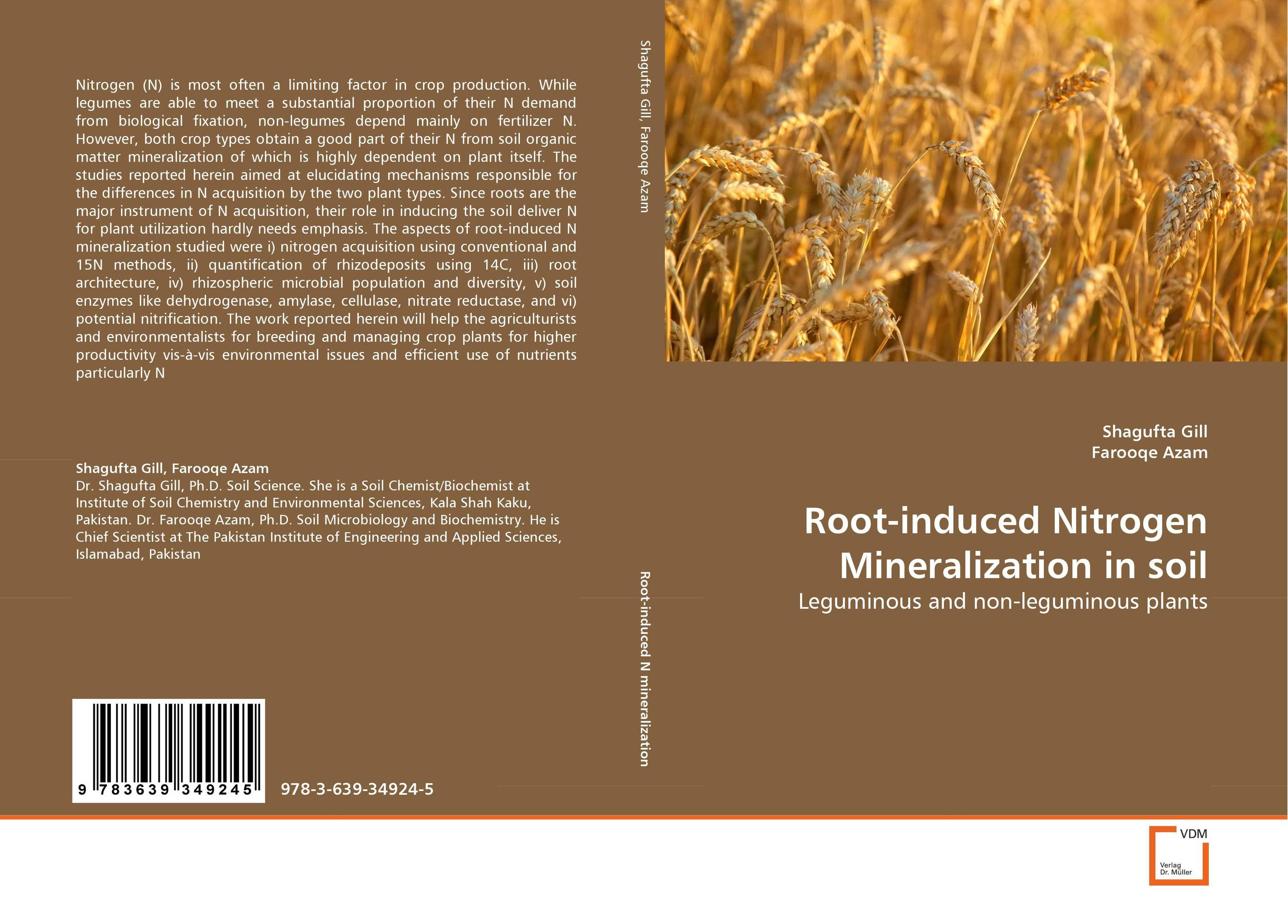 Root-induced Nitrogen Mineralization in soil the teeth with root canal students to practice root canal preparation and filling actually