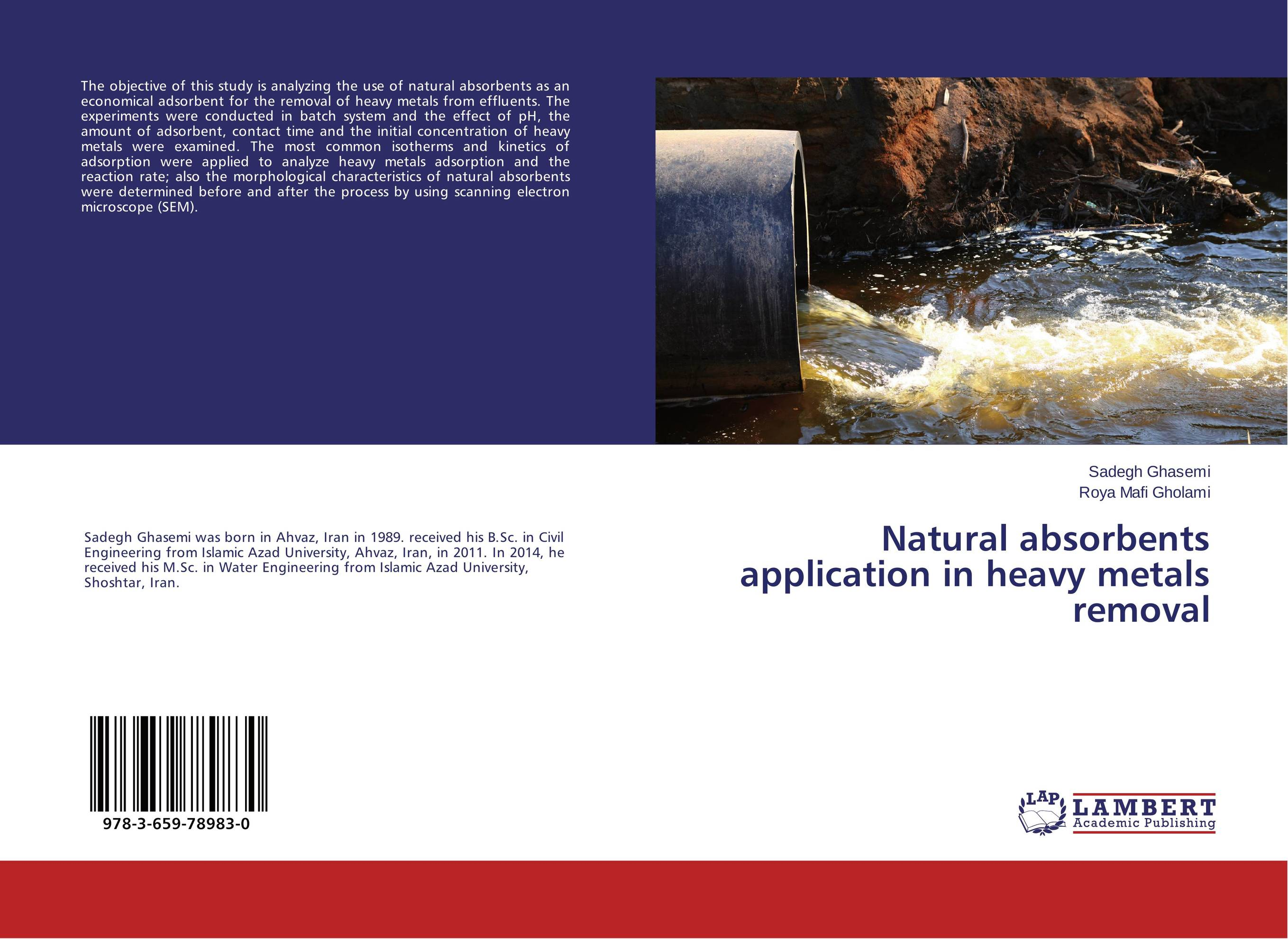 Natural absorbents application in heavy metals removal an epidemiological study of natural deaths in limpopo