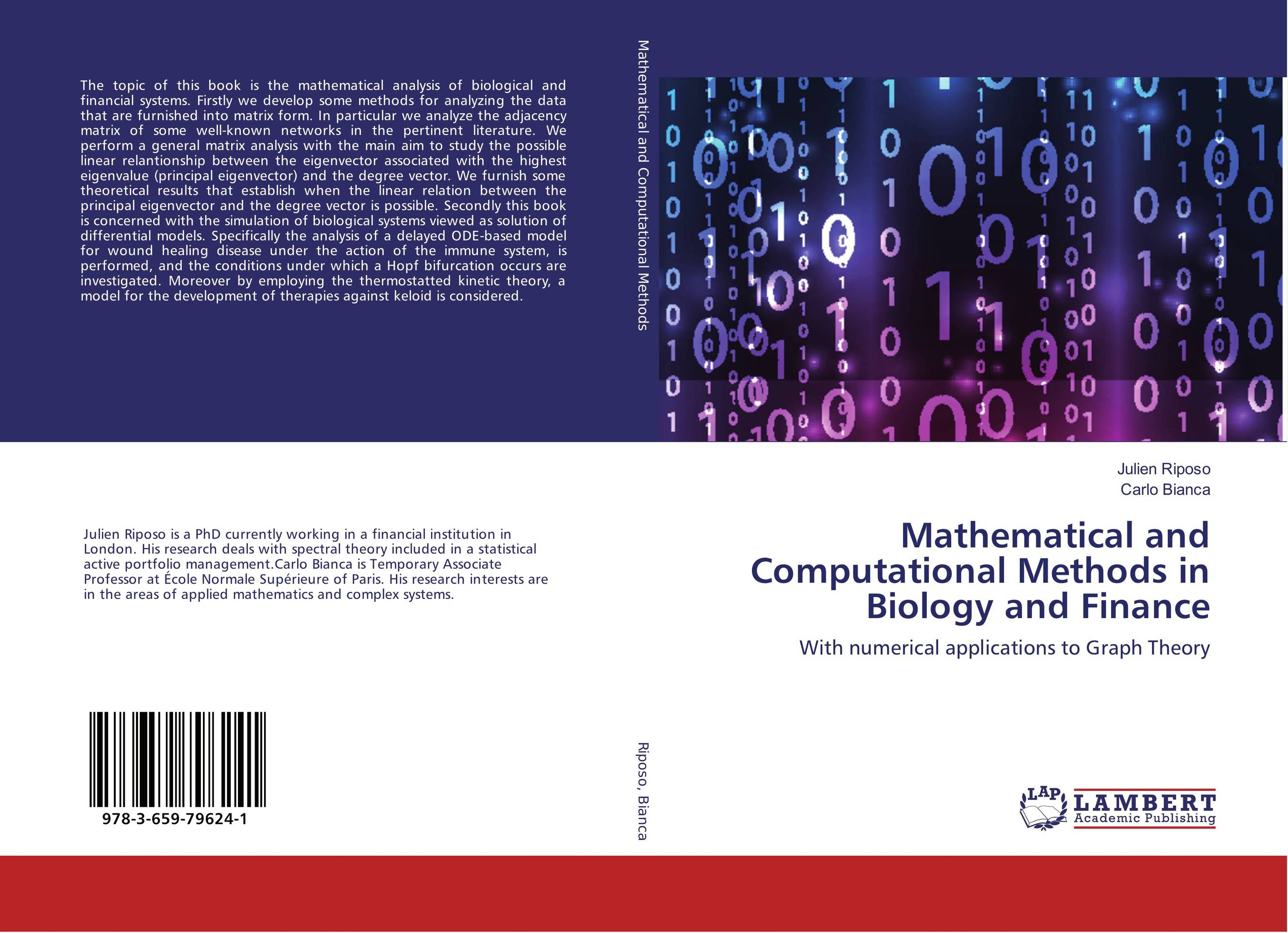 Mathematical and Computational Methods in Biology and Finance development of a computational interface for small hydropower plant