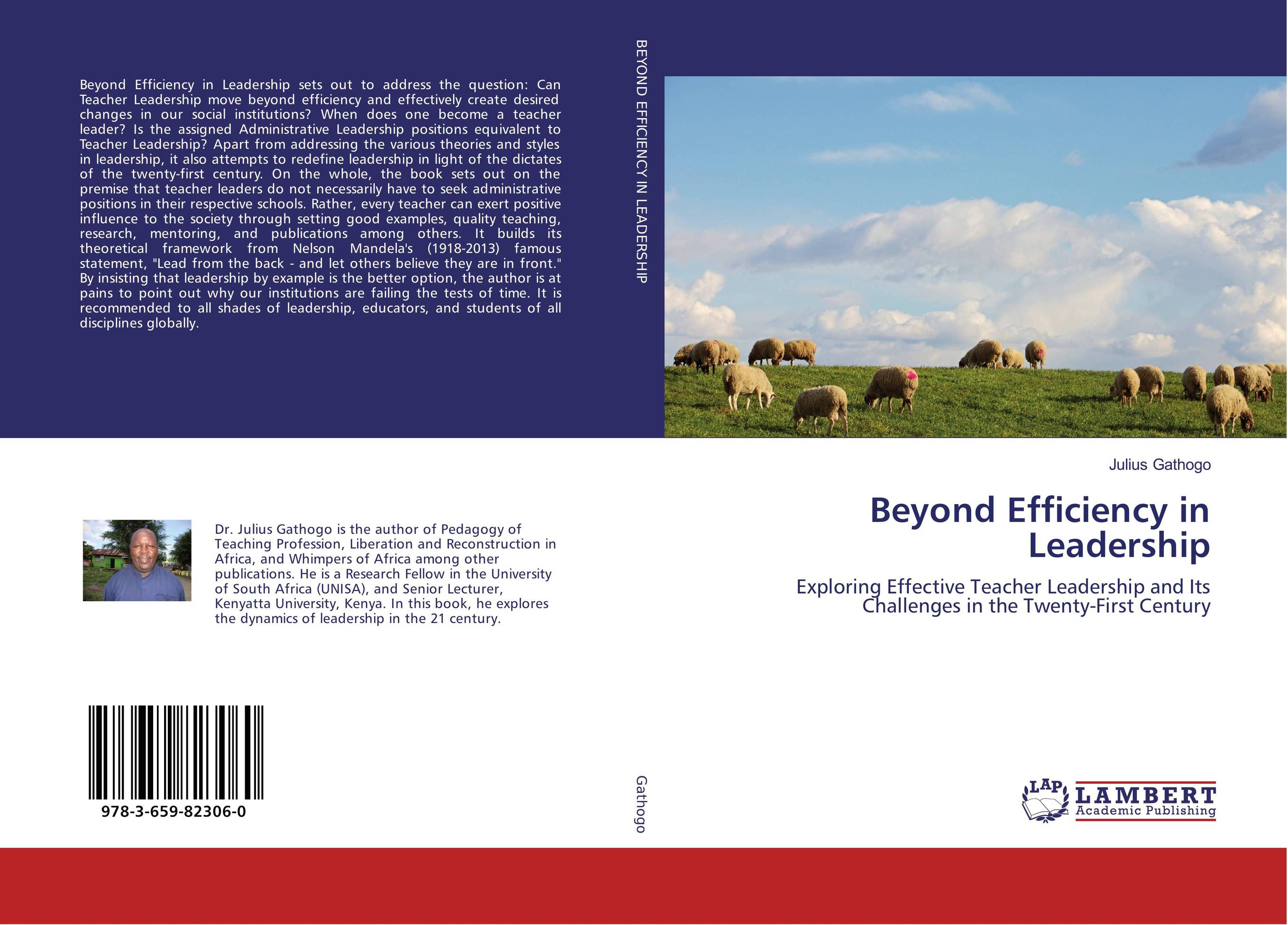 Beyond Efficiency in Leadership jeffrey sonnenfeld leadership and governance from the inside out