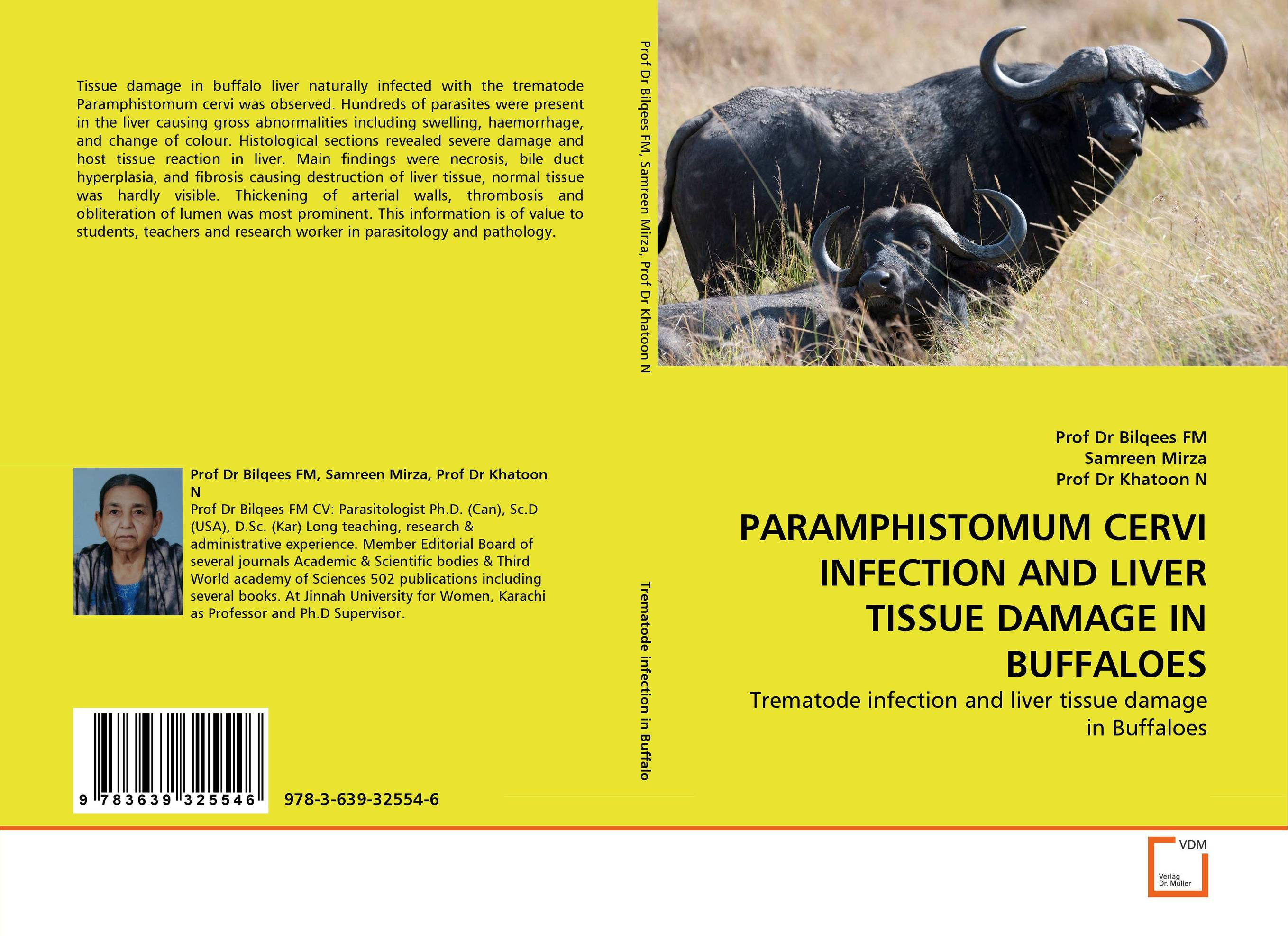 PARAMPHISTOMUM CERVI INFECTION AND LIVER TISSUE DAMAGE IN BUFFALOES fatty liver imaging patterns and pitfalls