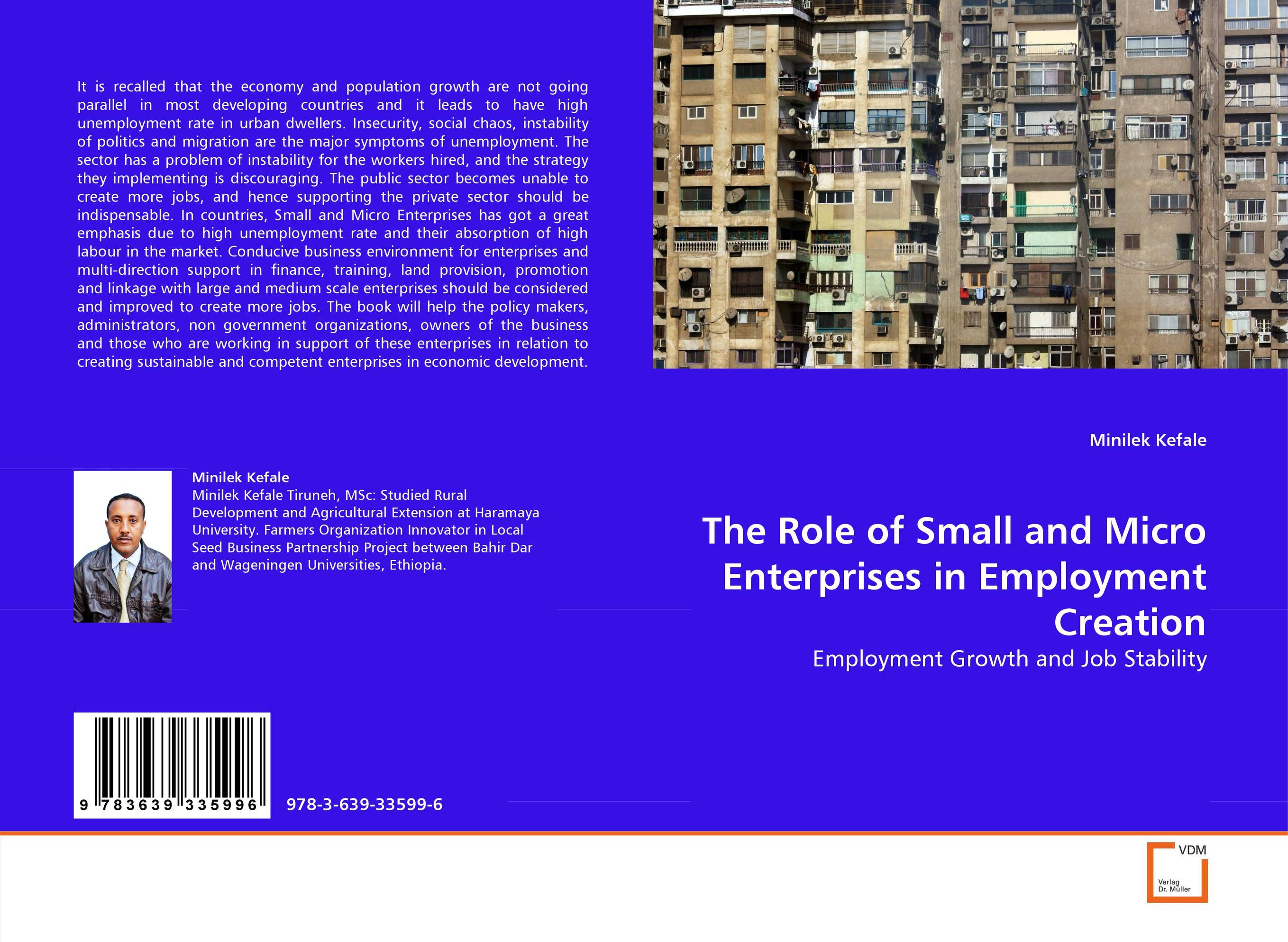 Фото The Role of Small and Micro Enterprises in Employment Creation finance and investments