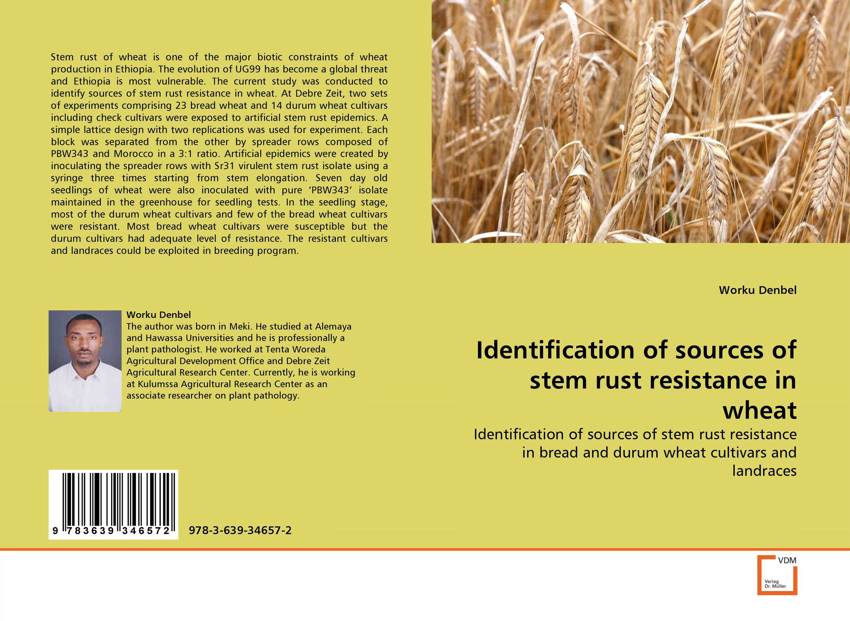 Identification of sources of stem rust resistance in wheat genetic variation for stem rust resistance in spring wheat