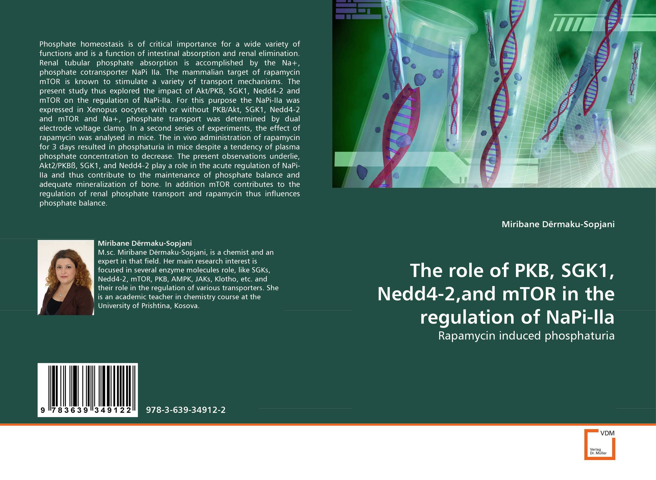 The role of PKB, SGK1, Nedd4-2,and mTOR in the regulation of NaPi-lla risk regulation and administrative constitutionalism