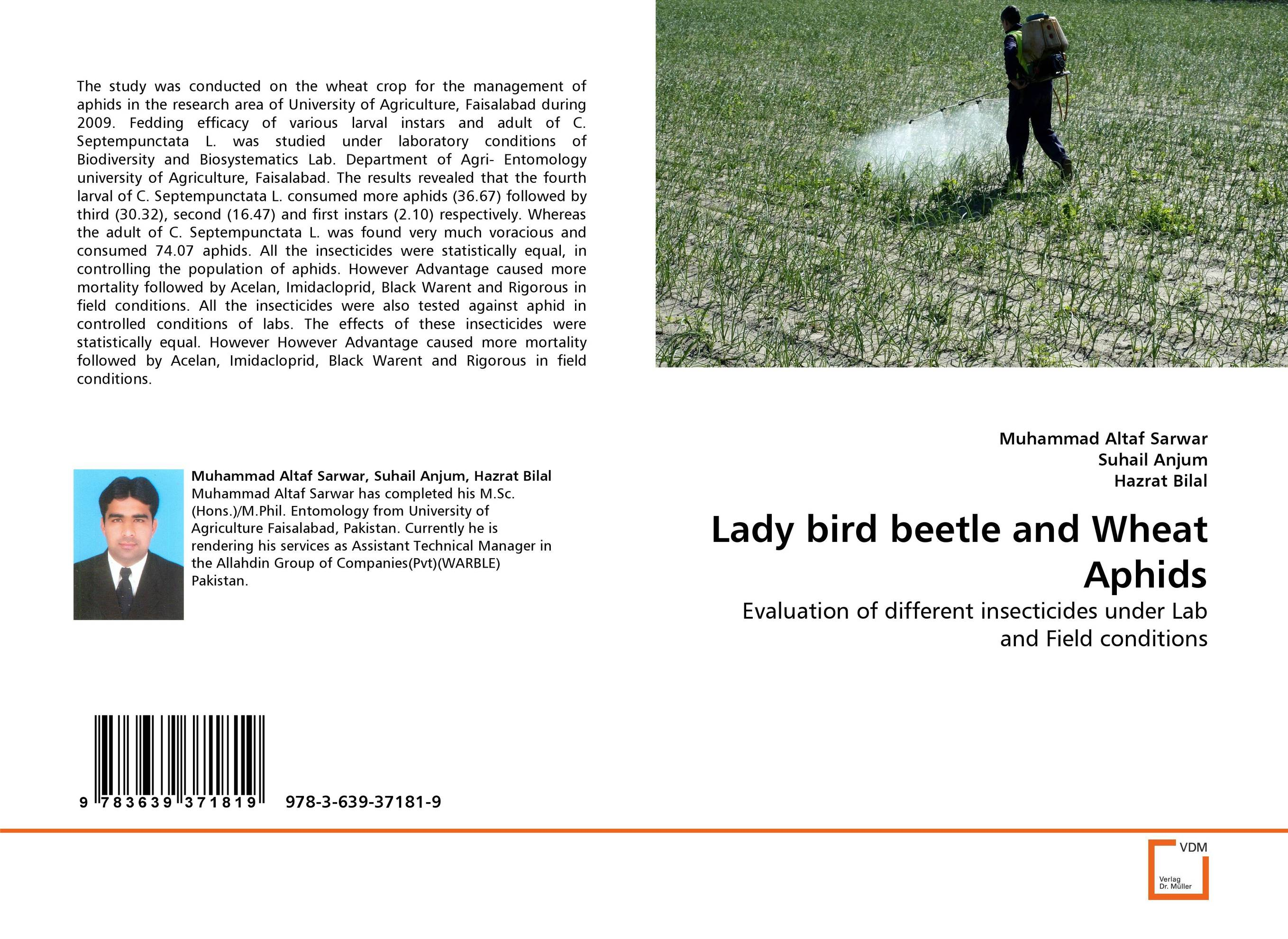 Lady bird beetle and Wheat Aphids evaluation of lucern as a predator source for wheat aphids