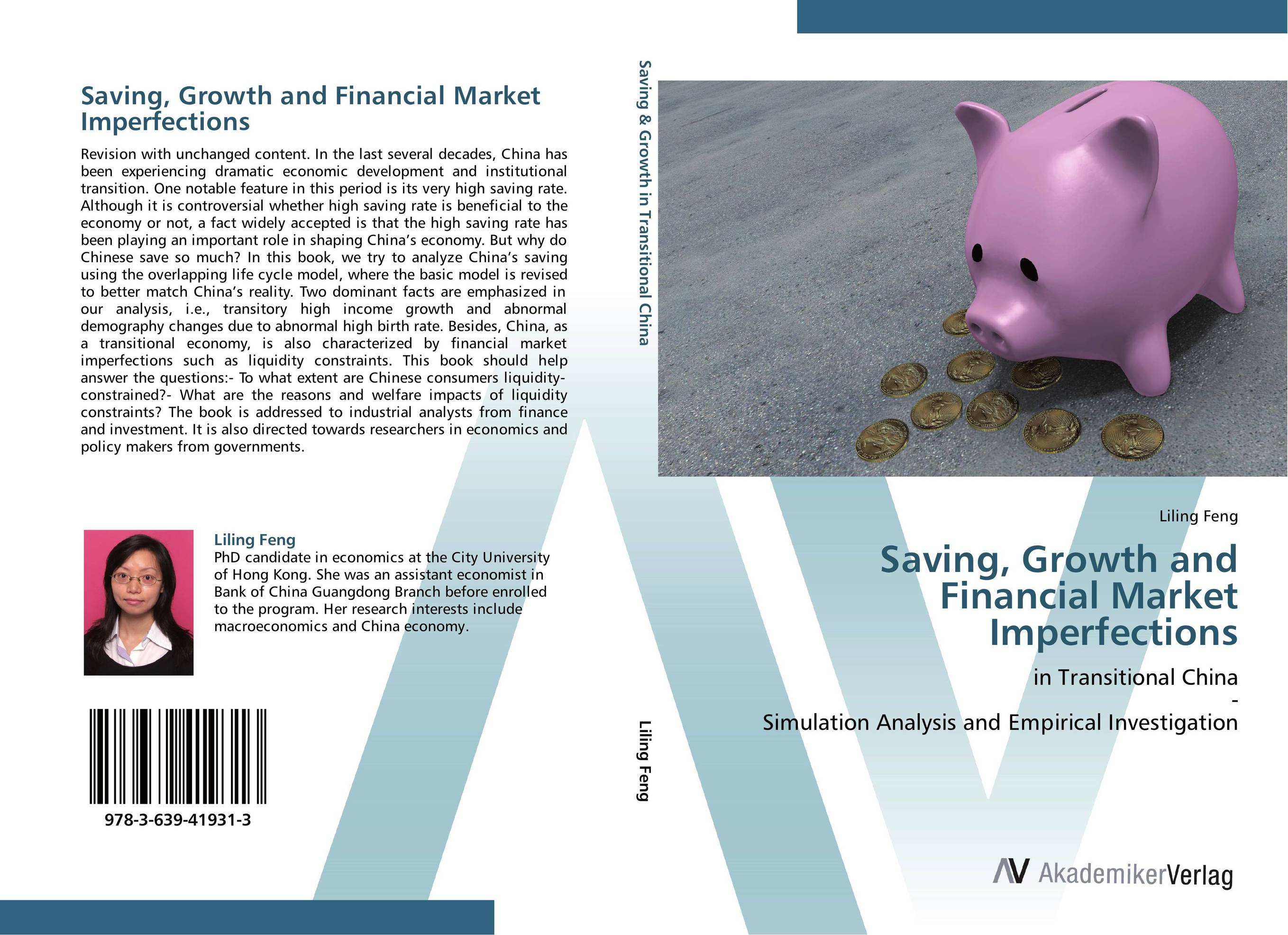 Saving, Growth and Financial Market Imperfections david sussman investment project design a guide to financial and economic analysis with constraints