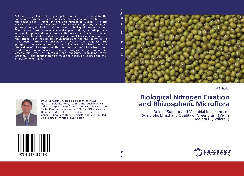 Biological Nitrogen Fixation and Rhizospheric Microflora jacob thomas biological nitrogen fixation by azospirillum brasilense