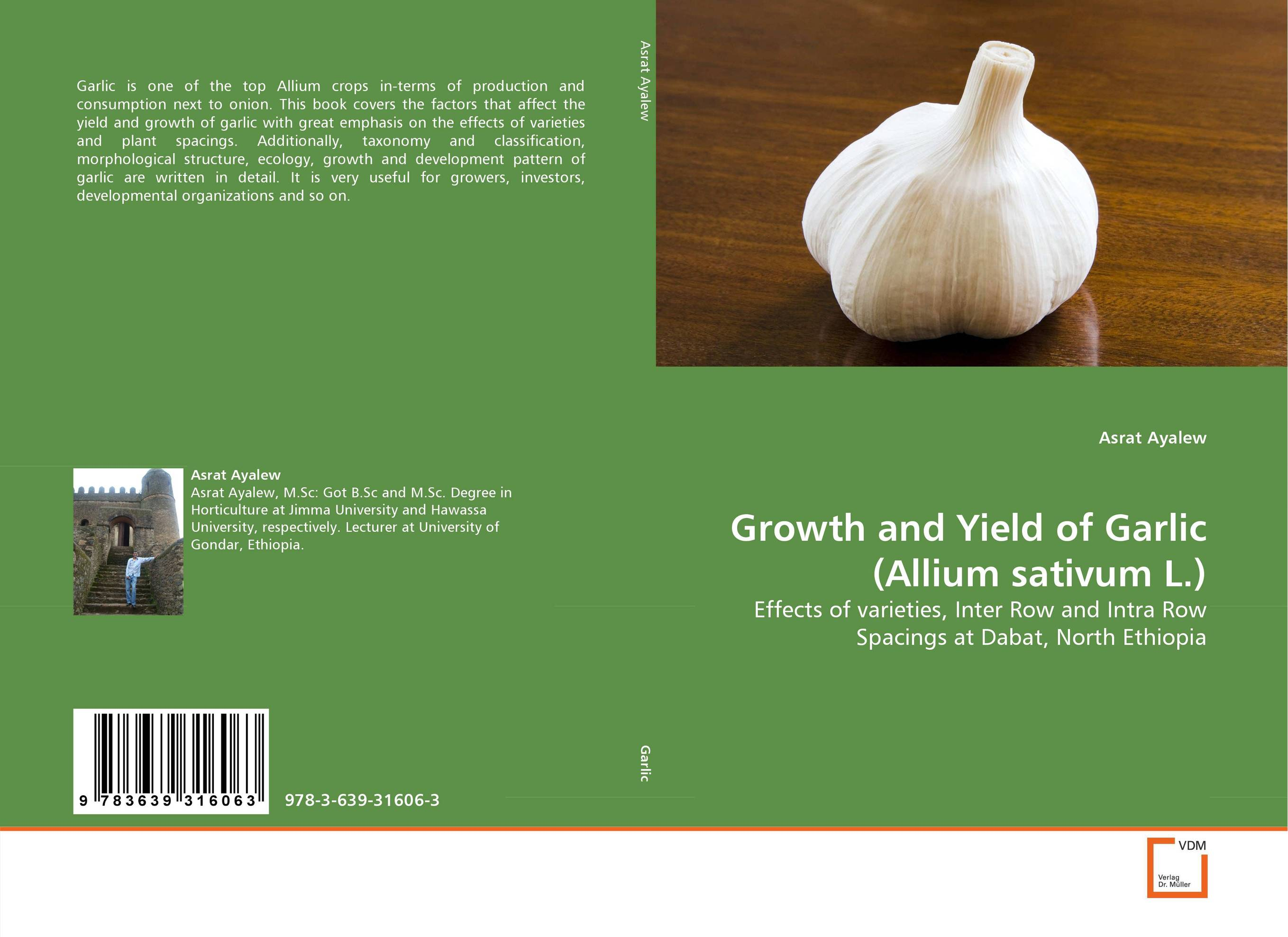 Growth and Yield of Garlic (Allium sativum L.) plant taxonomy and systematics