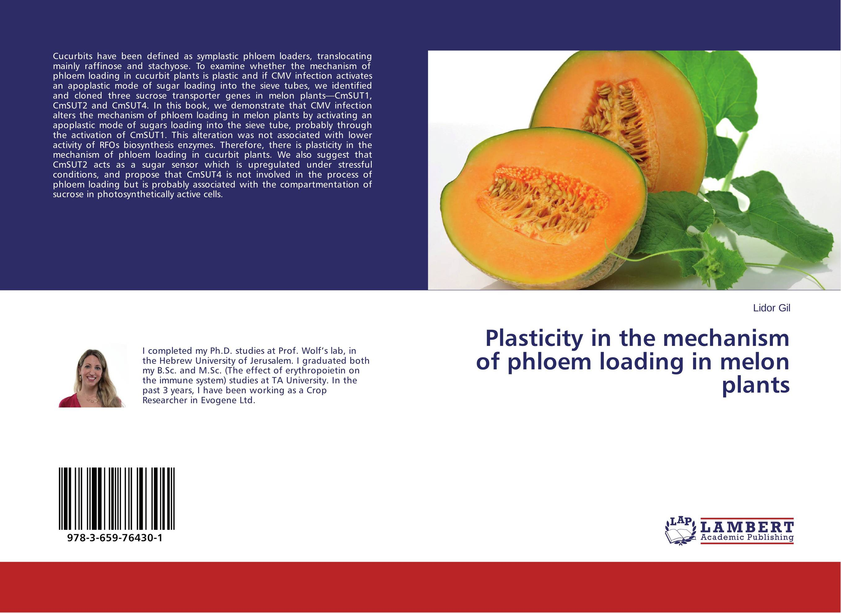 Plasticity in the mechanism of phloem loading in melon plants the viabilities of musyarakah as social protection mechanism