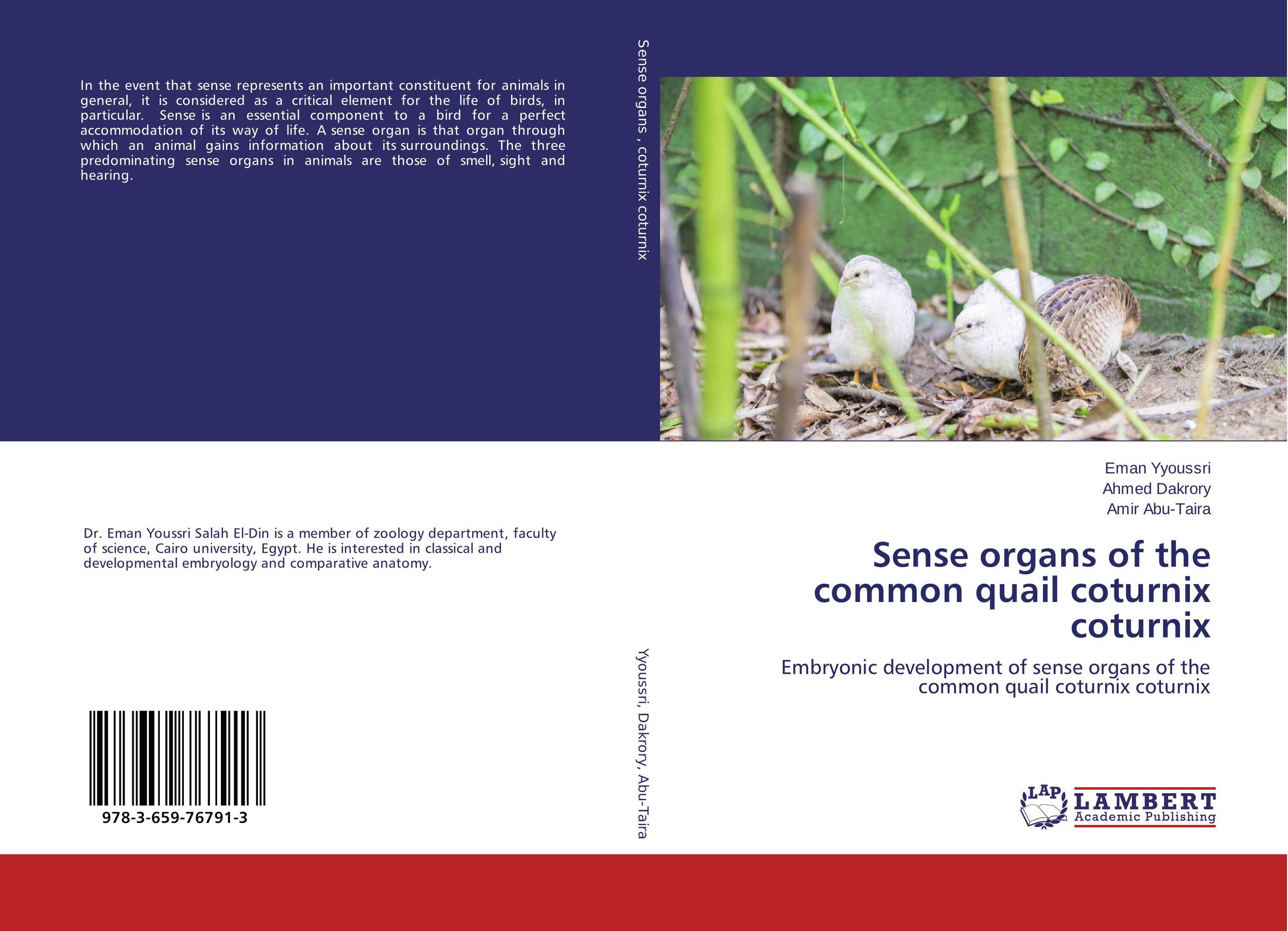 Sense organs of the common quail coturnix coturnix sense and sensibility an annotated edition