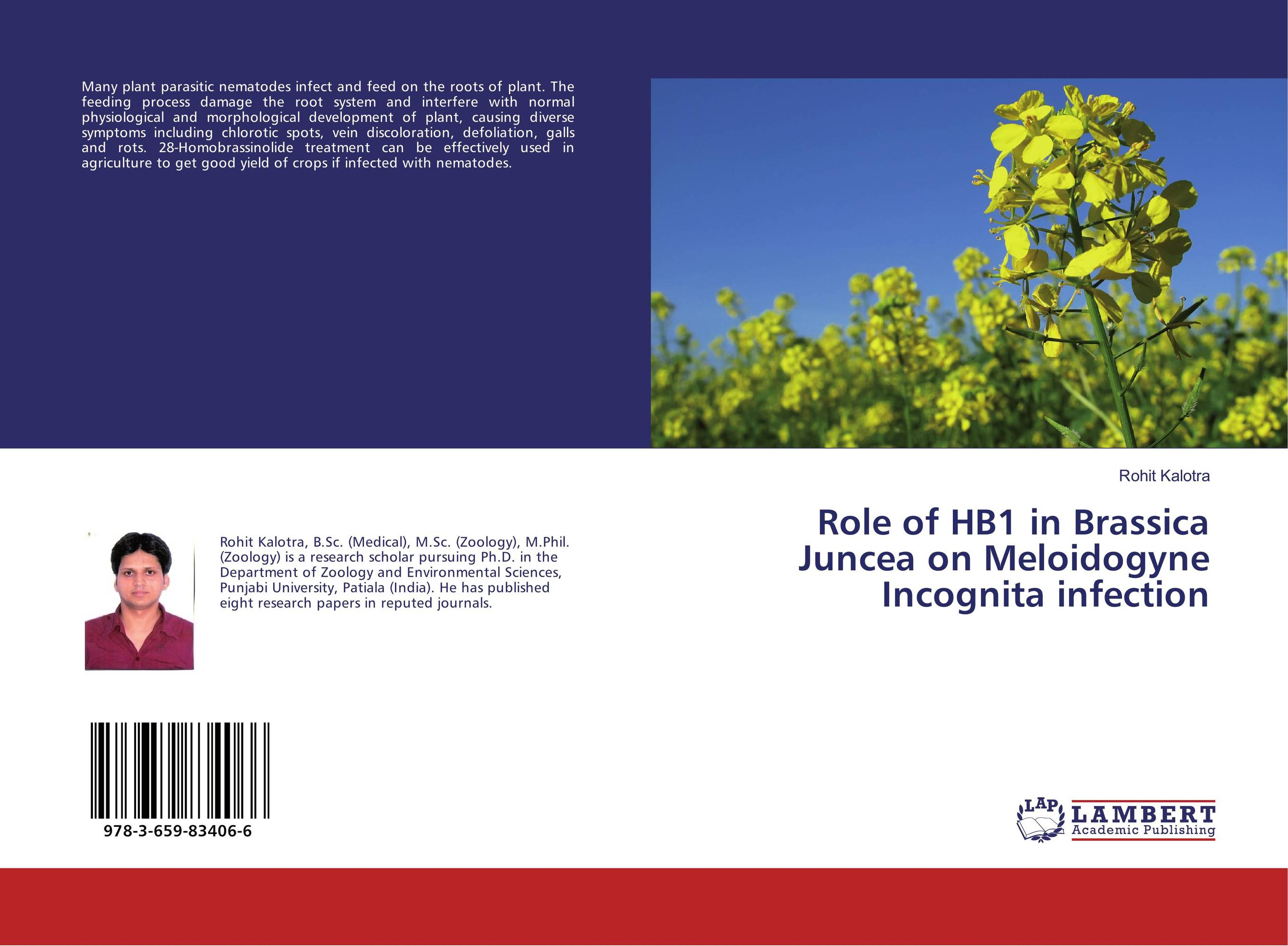 Role of HB1 in Brassica Juncea on Meloidogyne Incognita infection nematodes of vegetable crops their control using plant extracts