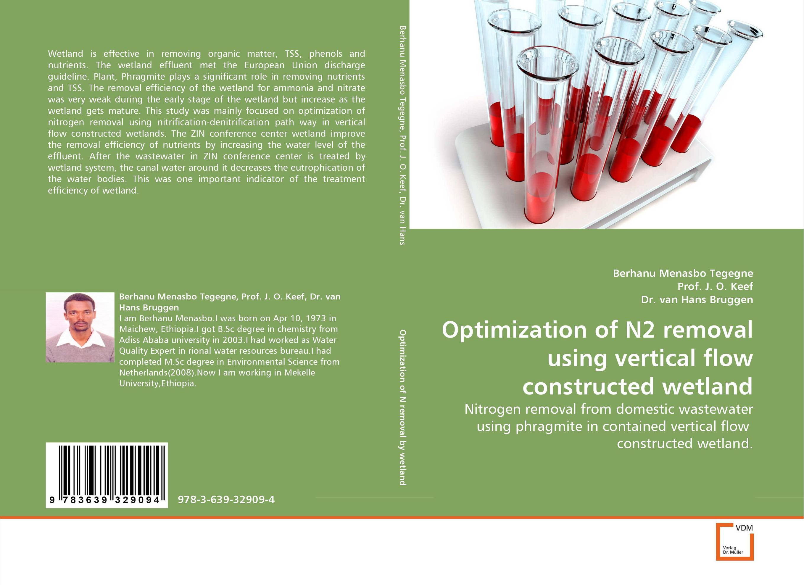 Optimization of N2 removal using vertical flow constructed wetland bacterial composition of constructed wetland s biofilm
