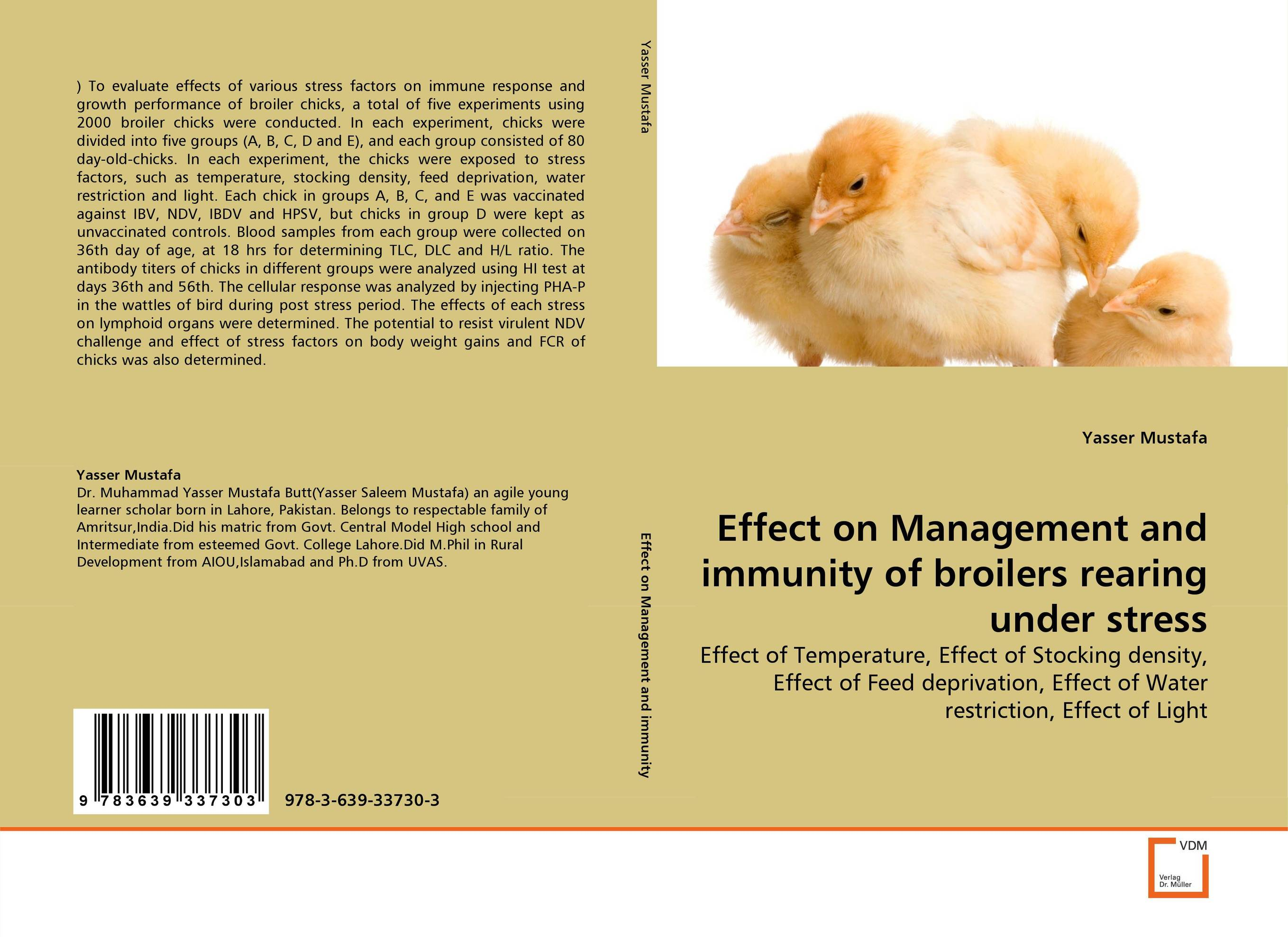 Effect on Management and immunity of broilers rearing under stress
