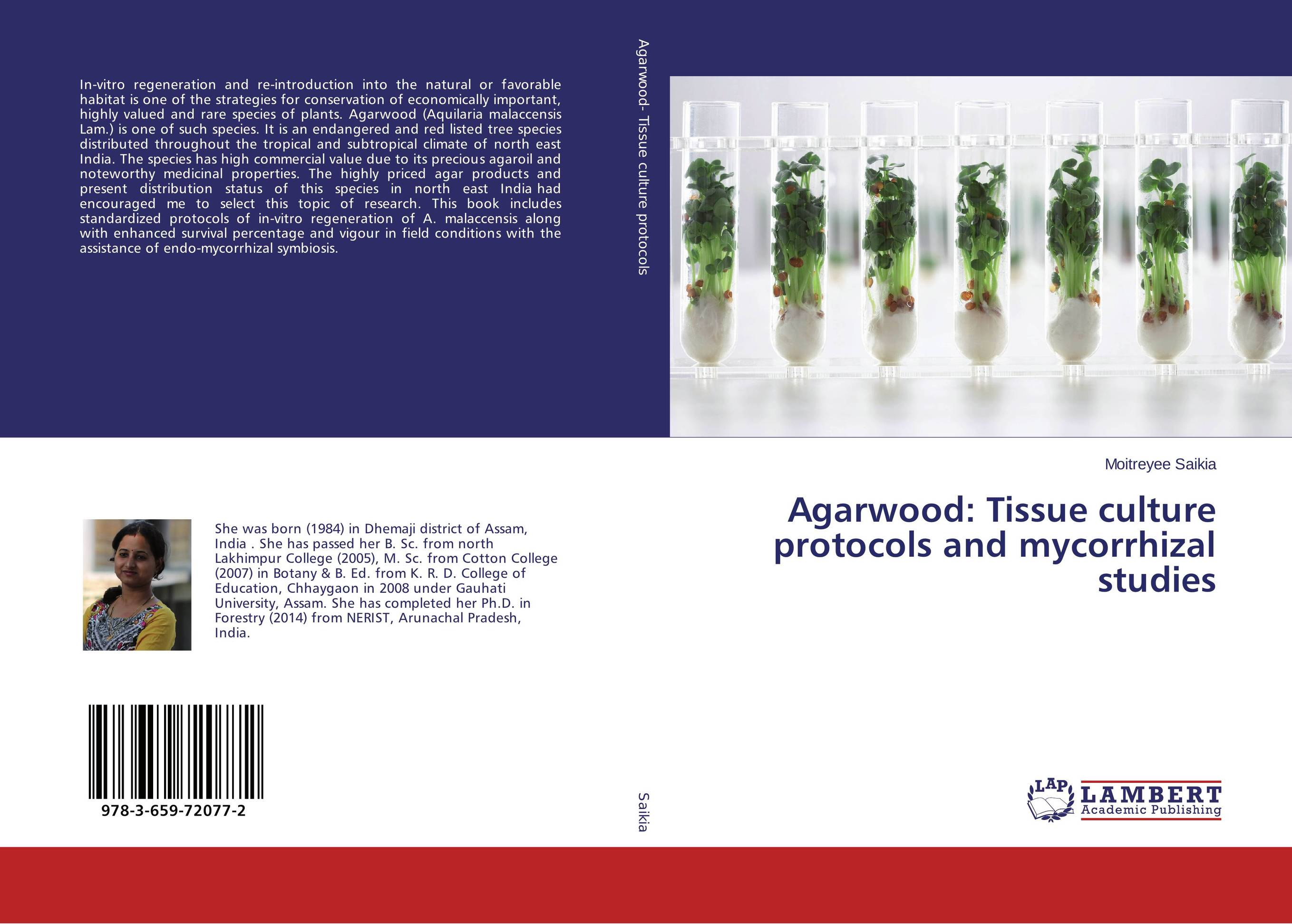 Agarwood: Tissue culture protocols and mycorrhizal studies anatomical studies on species of subfamily stachyoideae lamiaceae