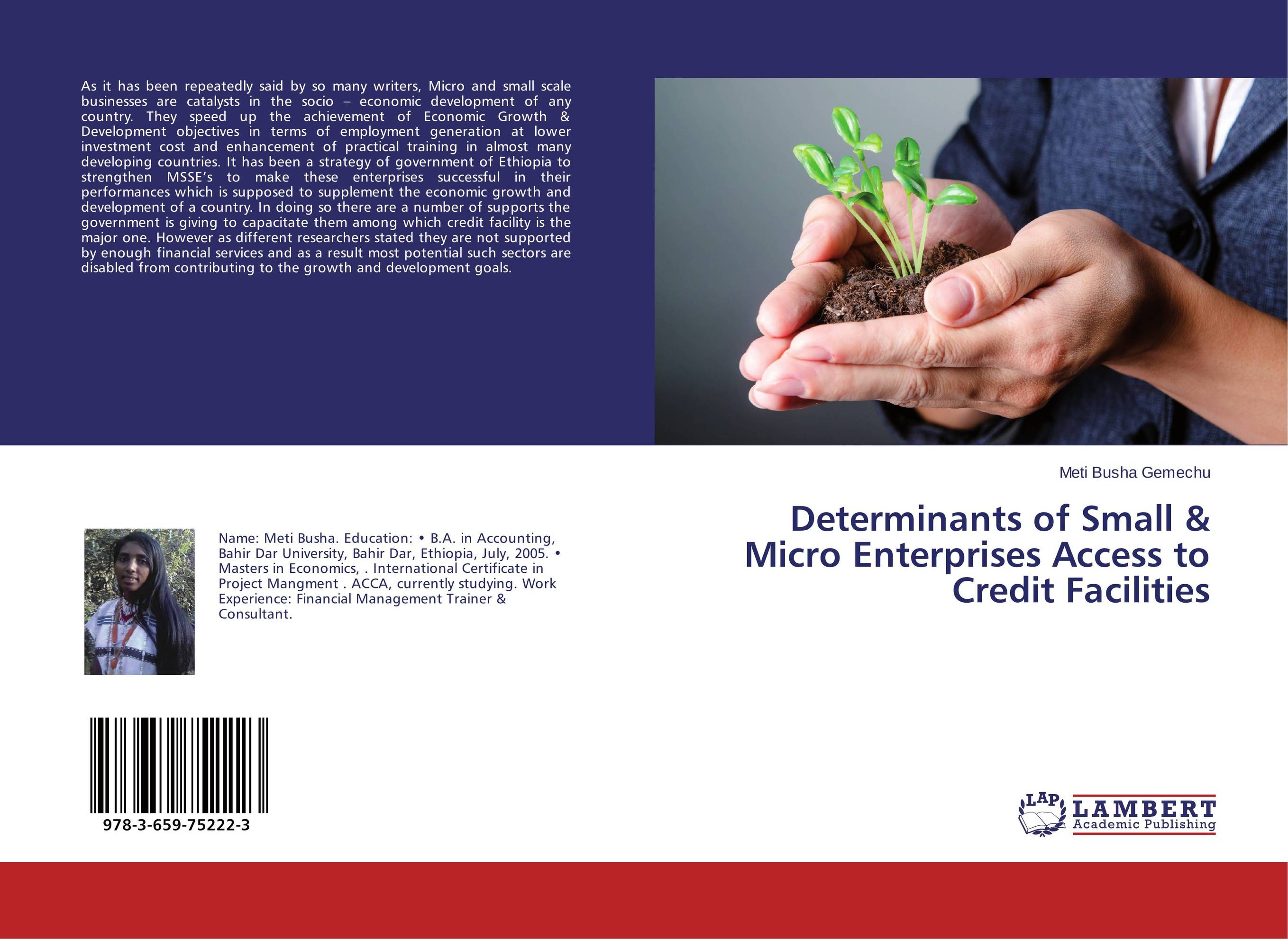 Determinants of Small & Micro Enterprises Access to Credit Facilities