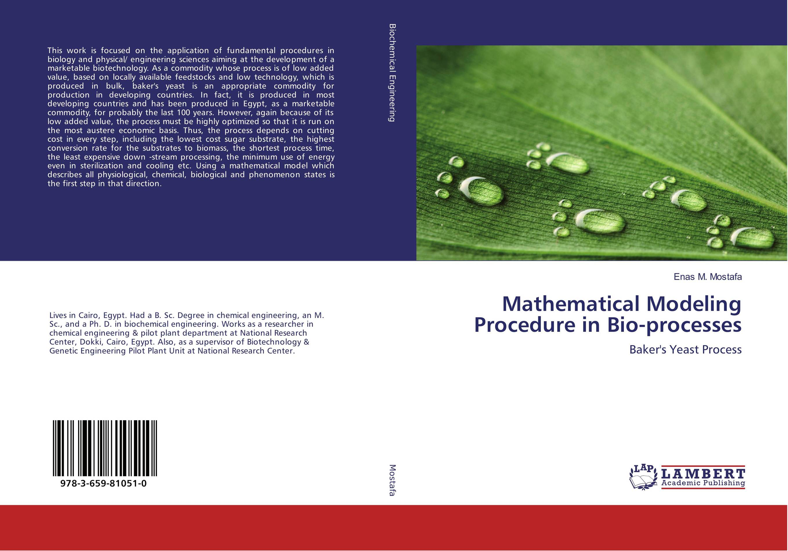 Mathematical Modeling Procedure in Bio-processes adding value to the citrus pulp by enzyme biotechnology production