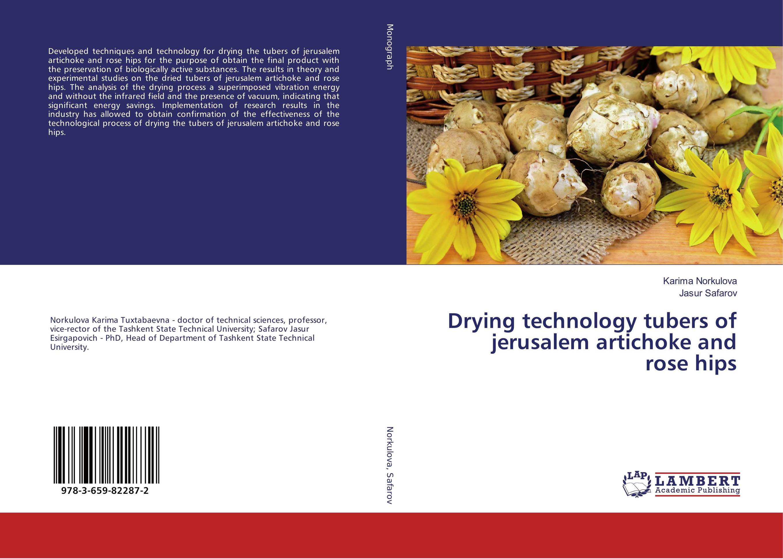 Drying technology tubers of jerusalem artichoke and rose hips