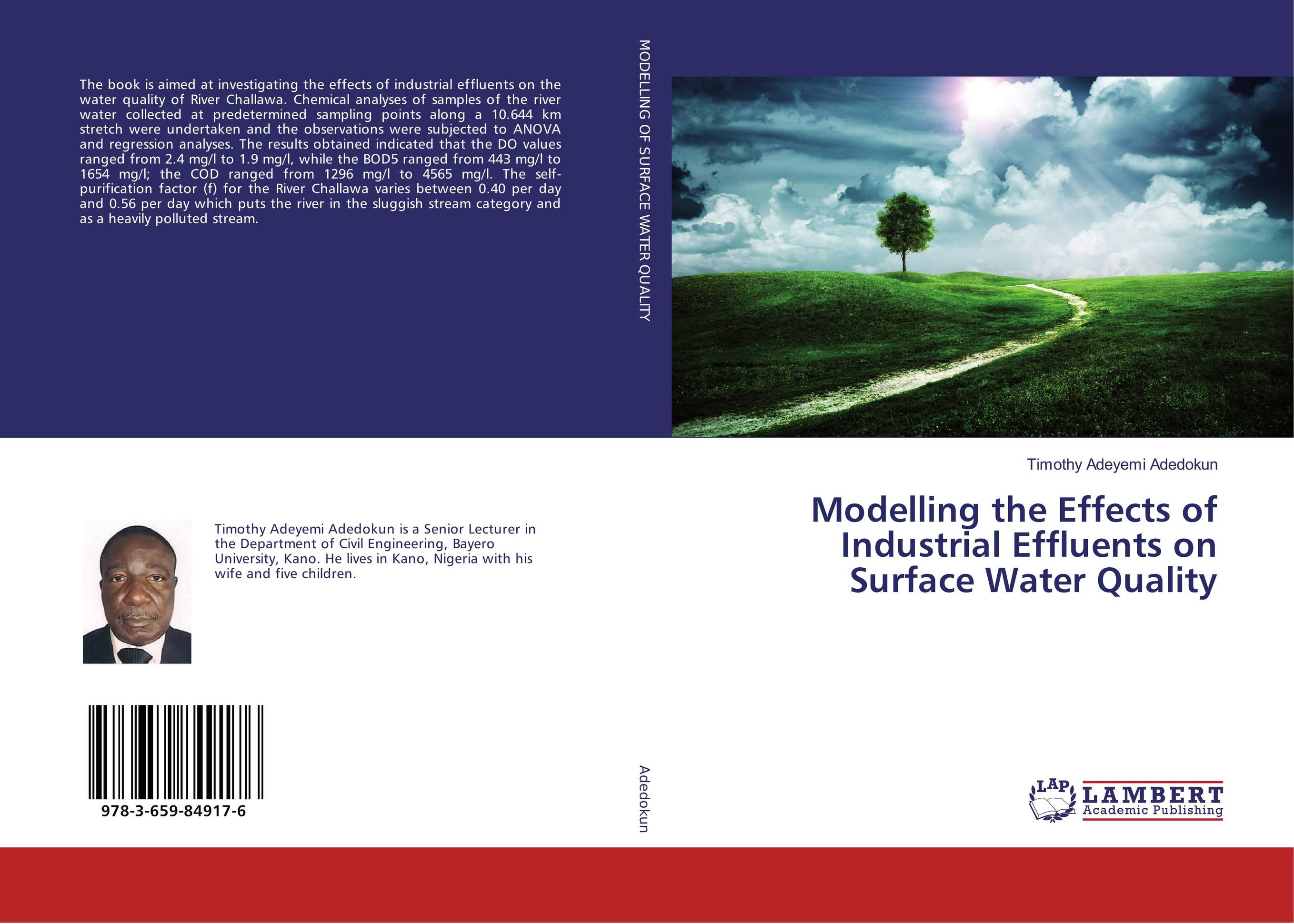 Modelling the Effects of Industrial Effluents on Surface Water Quality