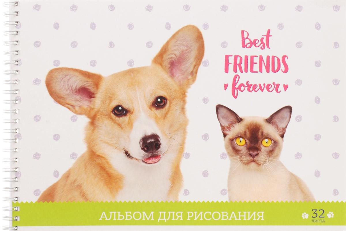 ArtSpace Альбом для рисования Best Friends Forever 32 листаА32спВЛ_9169_белый,зеленыйАльбом ArtSpace Best Friends Forever подходит для рисования различными типами красок, фломастерами, цветными и черно-графитными карандашами, гелевыми ручками. Он имеет формат А4, а его обложка изготовлена из импортного мелованного картона с красивыми изображениями кошки и собаки. Такой альбом для рисования будет вдохновлять вашего ребенка на творческий процесс. Внутренний блок состоит из 32 листов офсетной бумаги на спирали.Занимаясь изобразительным творчеством, ребенок тренирует мелкую моторику рук, становится более усидчивым и спокойным.