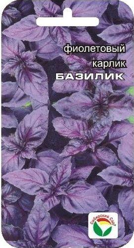 Семена Сибирский сад Базилик. Карлик фиолетовый, 0,5 гBP-00000177Травянистое однолетнее растение, обладающее как пряно-ароматическими, так и лекарственными свойствами. Растение темно-фиолетового цвета, достигает в высоту 30-35 см, имеет великолепный вкус с оттенком запаха душистого перца. Растение великолепно отрастает после срезки. Обладает дезинфицирующим и мочегонным действием, снимает спазмы желудка и способствует укреплению нервной системы, обладает великолепным тонизирующим действием и способствует лучшему перевариванию жиров.Базилик предпочитает легкие плодородные почвы, не переносит переувлажнение и затенение. Сбор урожая производят до и во время цветения. Используют в свежем и сушеном виде для приготовления различных блюд, соусов, а также для ароматизации уксуса и других напитков.Выращивается как через рассаду, так и посевом в грунт.Для ускорения процесса всхожести семян, оздоровления растений, улучшения завязываемости плодов рекомендуется пользоваться специально разработанными стимуляторами роста и развития растений.