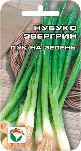 Семена Сибирский сад Лук на зелень. Нубука Эвергрин несколько дней из жизни обломова новосибирск