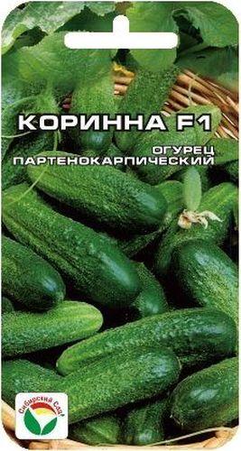 Семена Сибирский сад Огурец. Коринна, 7 штBP-00000302Ранний самоопыляемый гибрид корнишонного типа для выращивания в открытом и защищенном грунте. Характеризуется быстрым и мощным ростом растения, букетной завязью плодов, ранней и дружной отдачей урожая. В пазухах формируется по 3-4 огурчика длиной 6-8 см. Зеленцы аккуратной цилиндрической формы, мелкобугорчатые, плотной консистенции, хрустящие и вкусные. Долго не желтеют после сбора. Хороши для свежих салатов, засолки и консервирования. Гибрид устойчив к кладоспориозу, аскохитозу, почти не поражается настоящей мучнистой росой. Урожайность высокая.Культура требовательна к теплу, влаге и плодородной почве.Выращивают прямым посевом семян в грунт или рассадным способом. Рассаду высаживают в грунт когда минует угроза заморозков. Посев семян производят на глубину 2-3 см. Оптимальная температура почвы для посева семян от +14°C до +15°C. Растение укрывают пленкой, при необходимости подвязывают к шпалере. Полив и подкормки органическими и минеральными удобрениями в процессе вегетации.Полив следует осуществлять после захода солнца теплой водой. Сбор урожая через каждые 3-5 дней. Для ускорения процесса всхожести семян, оздоровления растений, улучшения завязываемости плодов рекомендуется пользоваться специально разработанными стимуляторами роста и развития растений.