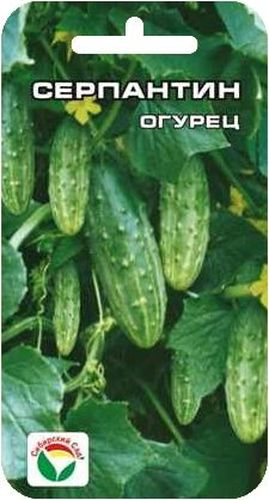 Семена Сибирский сад Огурец. Серпантин, 15 штBP-00000316Ранний урожайный сорт для выращивания в открытом грунте и временных пленочных укрытиях. В плодоношение вступает на 36-38 день от всходов. Растение короткоплетистое, кустового типа. Зеленцы красивые, некрупные, средней массой 75-82 г. Имеют хорошие вкусовые качества в свежем и соленом виде. Сорт устойчив к комплексу основных болезней, неприхотлив к агротехнике и экологическим условиям. Хорошо переносит засуху. Обладает высокой интенсивностью отдачи раннего урожая. Полив и подкормка органическими и минеральными удобрениями в процессе вегетации.Для ускорения процесса всхожести семян, оздоровления растений, улучшения завязываемости плодов рекомендуется пользоваться специально разработанными стимуляторами роста и развития растений.