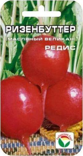 Семена Сибирский сад Редис. Ризенбуттер, 2 гBP-00000390Один из лучших ранних рыночных сортов редиса, с необычайно крупным красным корнеплодом, округло-вытянутой формы, высоких вкусовых качеств. Мякоть белая, сочная, нежная, вкусная, не дрябнет. Кожица корнеплода ярко-малиновая, с глянцевым маслянистым блеском. Диаметр корнеплода достигает до 8 см. Пригоден для посева в ранневесенние и летние сроки. Для ускорения процесса всхожести семян, оздоровления растений, улучшения завязываемости плодов рекомендуется пользоваться специально разработанными стимуляторами роста и развития растений.Вес: 2 г.