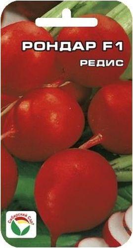 Семена Сибирский сад Редис. Рондар F1BP-00000391Раннеспелый всесезонный крупноплодный гибрид. Срок созревания 20-35 дней. Корнеплоды шаровидной формы, выровненные как на подбор, диаметром около 3см.