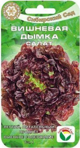 Семена Сибирский сад Салат. Вишневая дымка, 0,5 гBP-00000402Среднеспелый, обладающий высокой декоративностью сорт листового салата с повышенным содержанием йода. Формирует прямостоячую, быстро растущую розетку листьев высотой до 25 см. Листья небольшие, гофрированные по краю, красивого темно-вишневого цвета, сочные, полухрустящие, приятного вкуса. Товарная масса одного растения составляет 210-270 г. Сорт предназначен для выращивания в открытом грунте в течение всего лета, а также в теплицах на салатных линиях. Устойчив к цветушности и гнилям.