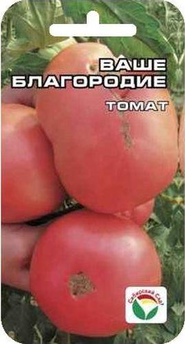Семена Сибирский сад Томат. Ваше благородие, 20 штBP-00000465Новый сорт томата с очень крупными плодами при росте куста 1,2-1,4 м. Все плоды на растении крупные, особенно первые - весом до 1 кг. Плоды розовые, плотные, но не жесткие. Мякоть нежная, сахаристая на изломе, плоды не трескаются, плодоношение длительное, растянутое. Урожайность - 6 кг с куста, то есть примерно ведро с куста. Сорт можно выращивать как в защищенном, так и в открытом грунте. При этом в открытом грунте достаточно пасынковать только до первой кисти. Посев на рассаду производят за 50-60 дней до высадки растений на постоянное место. Оптимальная постоянная температура прорастания семян 23-25°С. При высадке в грунт на 1 м2 размещают 5 растений. Сорт хорошо реагирует на полив и подкормки комплексными минеральными удобрениями. Для ускорения процесса всхожести семян, оздоровления растений, улучшения завязываемости плодов рекомендуется пользоваться специально разработанными стимуляторами роста и развития растений.