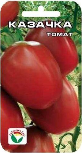 Семена Сибирский сад Томат. Казачка, 20 штBP-00000529Очень красивый, плодоносящий сорт среднего срока созревания. Растение индетерминантное, с крупными темно-зелеными листьями, формирует нарядные, плотные, длинные кисти, похожие на гирлянды или на девичьи косы. Кисти украшены вкусными, бочонковидными плодами темно-вишневого цвета, массой 35-50 г, долго сохраняющимися в кисти. Аккуратные, идеально выровненные, плотные томатики-бочоночки будут изысканно смотреться в банках и замечательно украсят ваш зимний стол. Сорт предназначен для выращивания в остекленных и пленочных теплицах.Посев на рассаду производят за 50-60 дней до высадки растений на постоянное место. Оптимальная постоянная температура прорастания семян 23-25°С. При высадке в грунт на 1 м2 размещают 3-4 растения. Сорт хорошо реагирует на полив и подкормки комплексными минеральными удобрениями. Выращивают в 1 -2 стебля с подвязкой.Для ускорения процесса всхожести семян, оздоровления растений, улучшения завязываемости плодов рекомендуется пользоваться специально разработанными стимуляторами роста и развития растений.